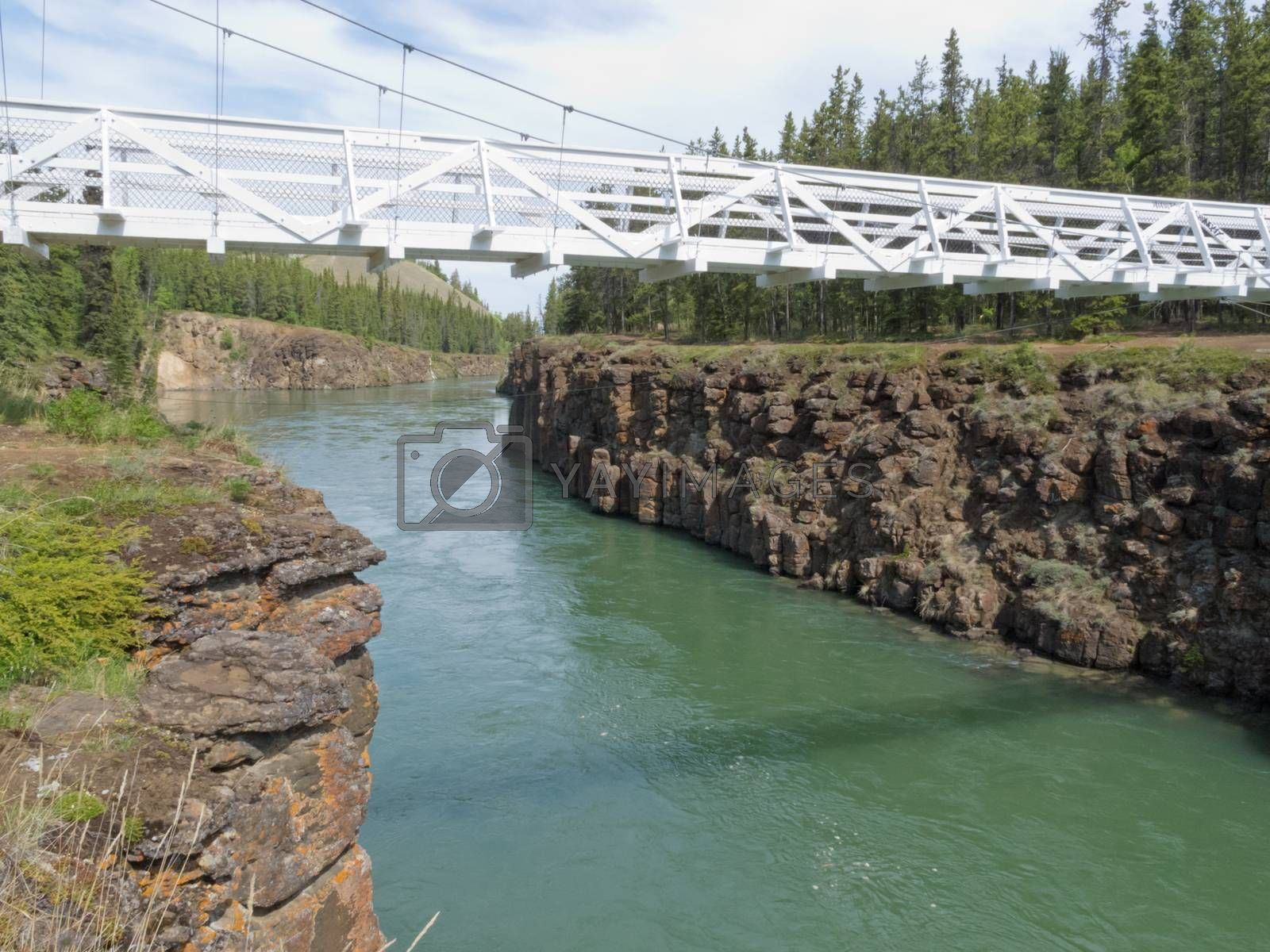 White suspension bridge across Miles Canyon Yukon by PiLens
