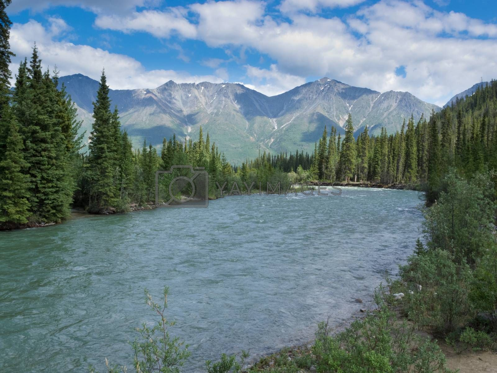 Wheaton River alpine valley Yukon Territory Canada by PiLens
