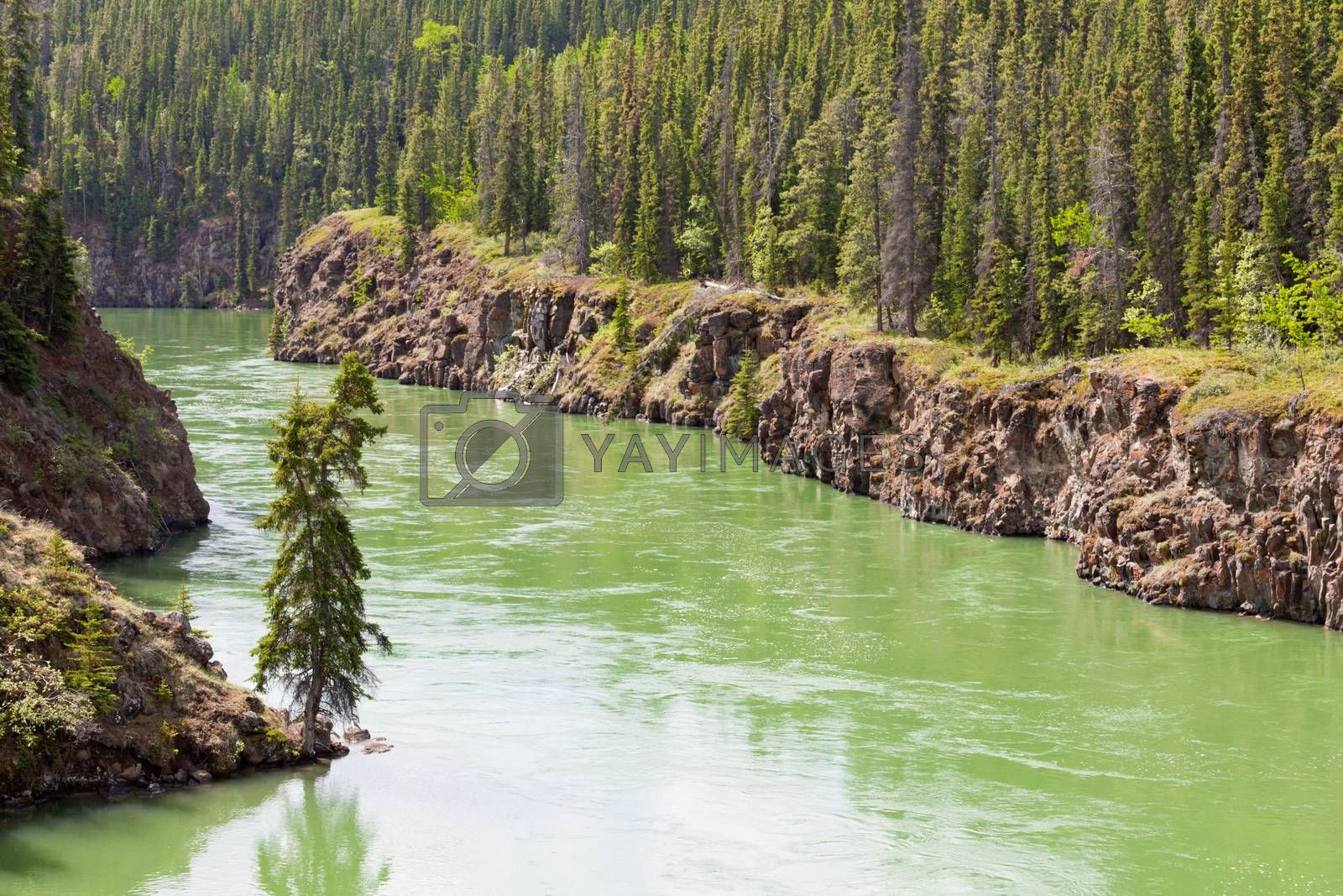 Yukon River water Miles Canyon Whitehorse Canada by PiLens