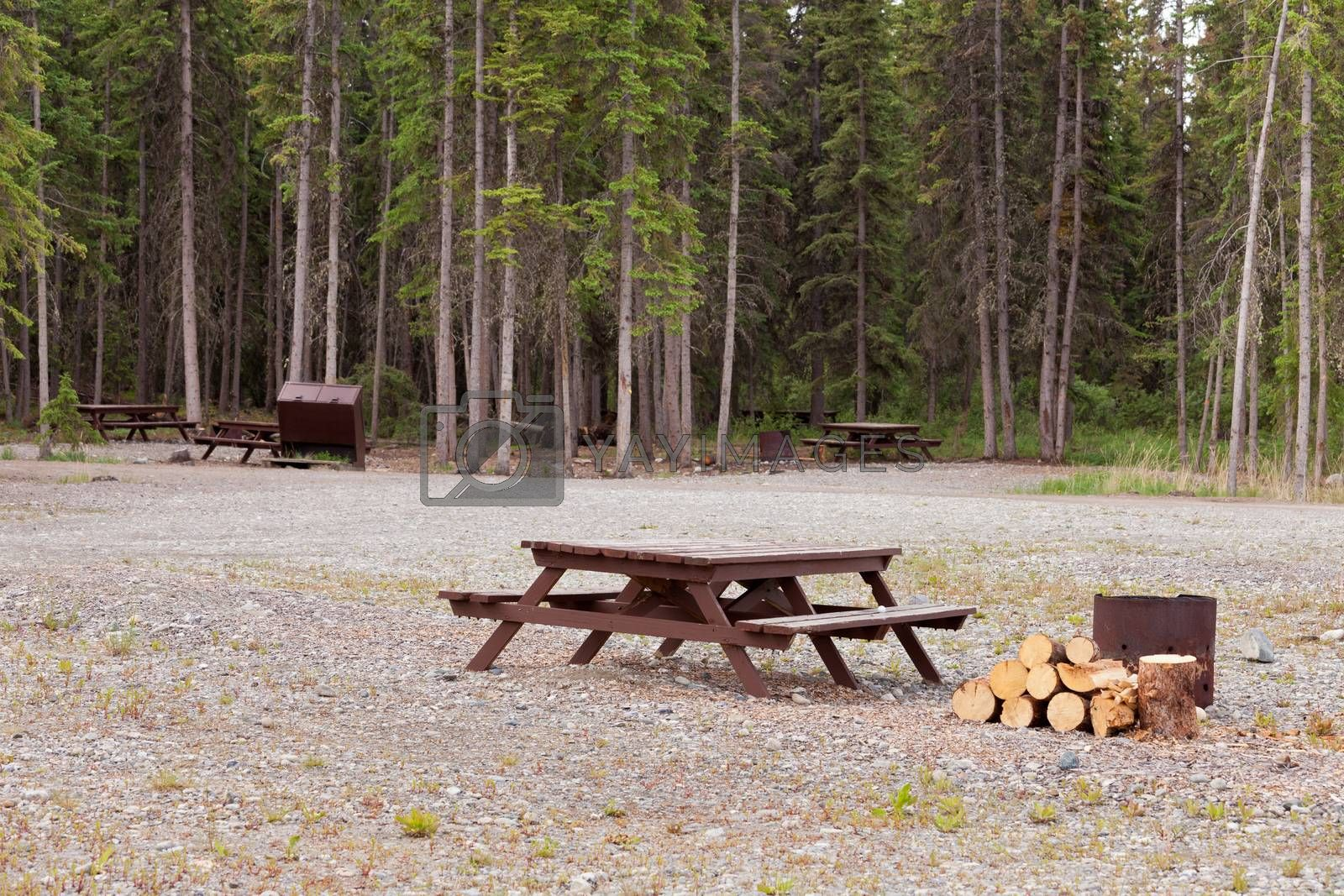 Camp ground campsites camping table firepits by PiLens