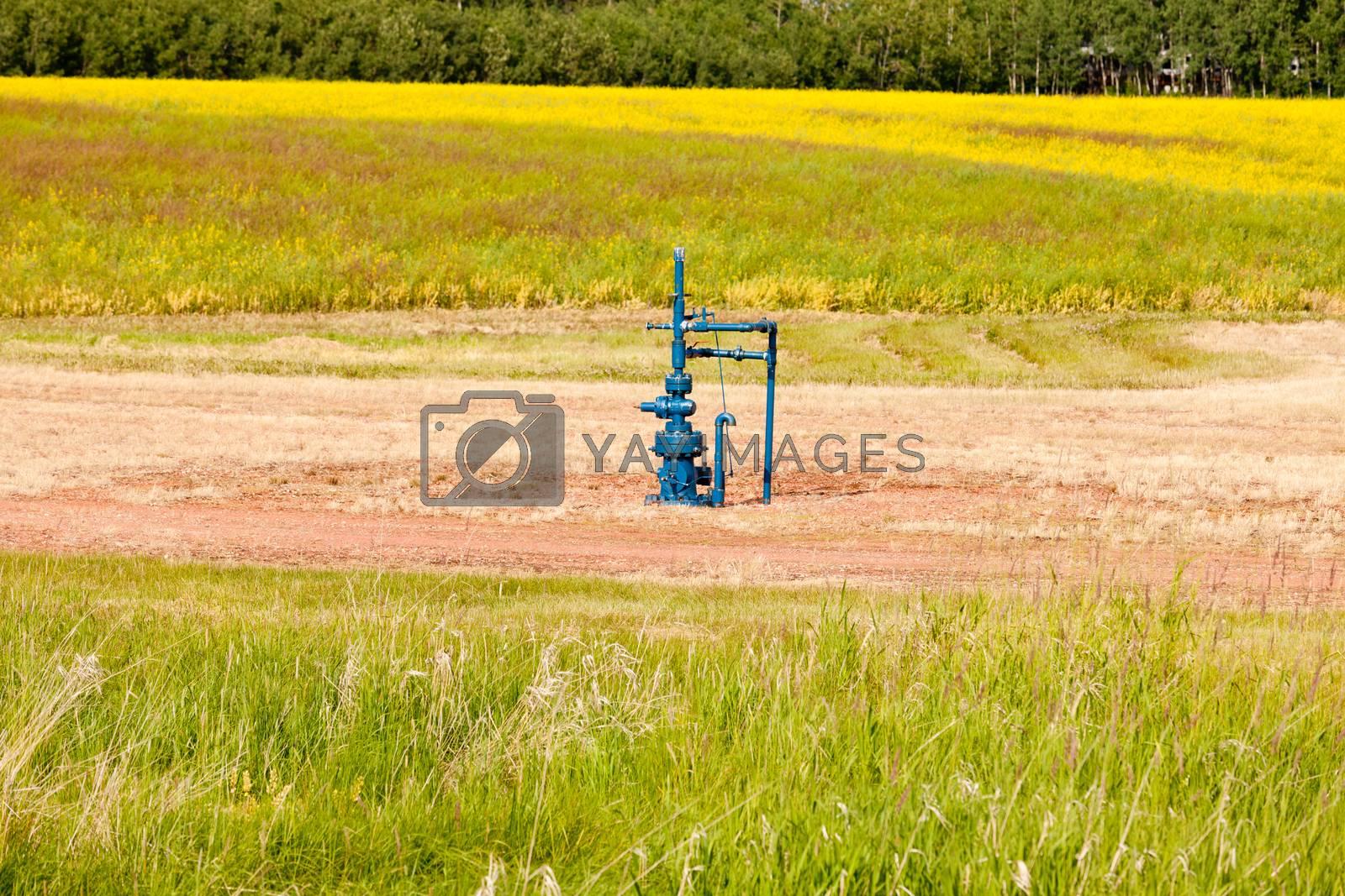 Natural gas wellhead Alberta Canada grassland by PiLens