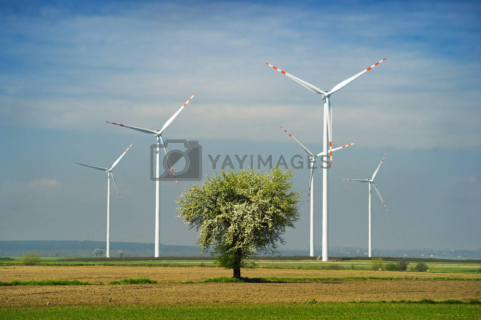 Wind turbine. by Pietus