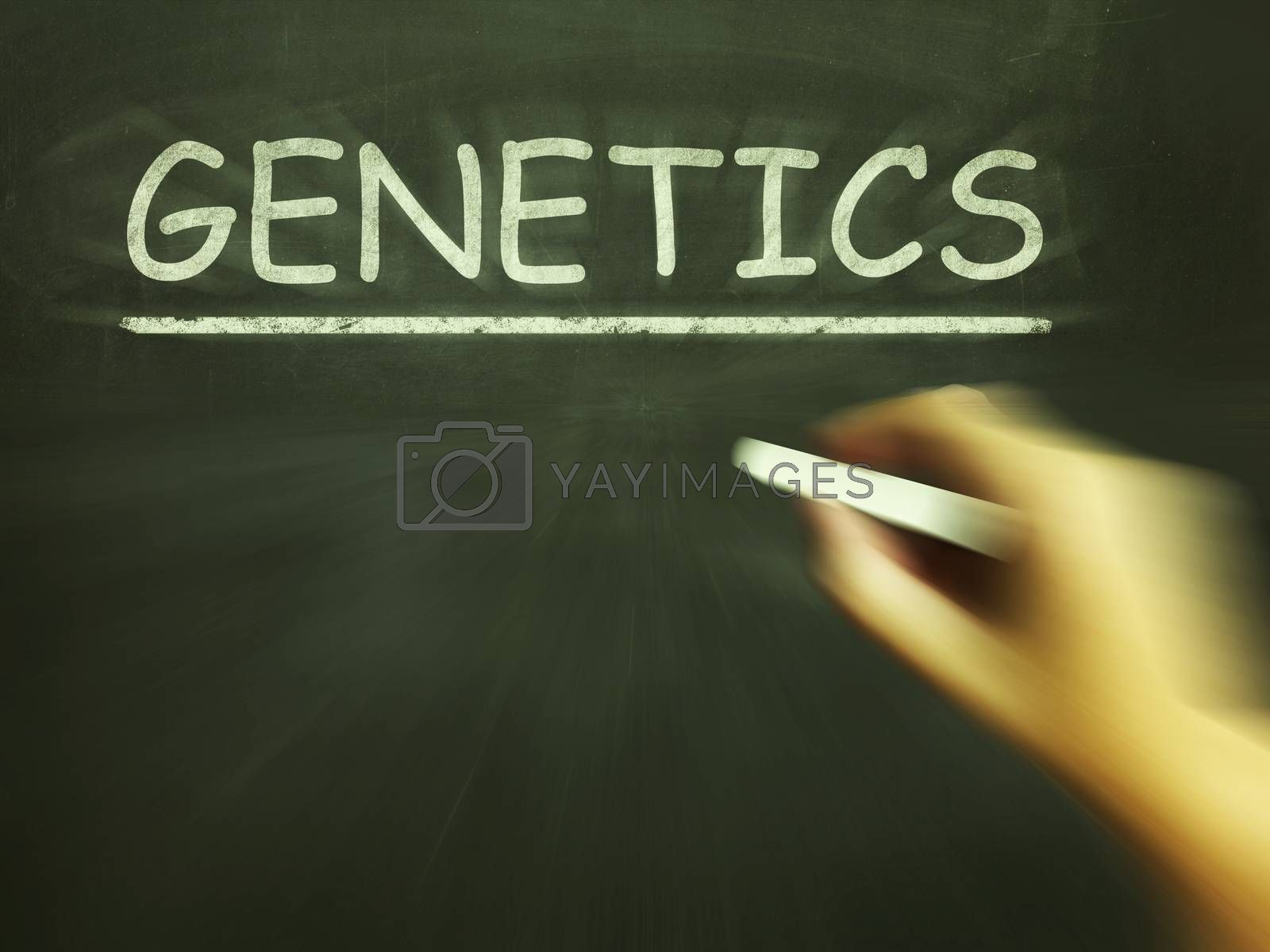 Genetics Chalk Means Genes DNA And Heredity by stuartmiles
