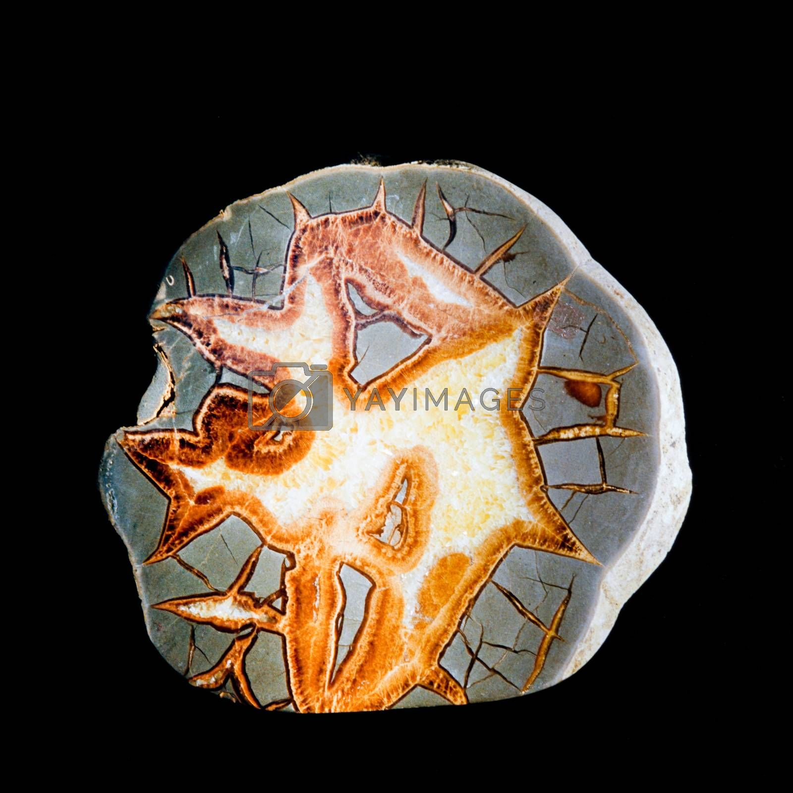 Septarian concretion nodule scalenohedral calcite by PiLens
