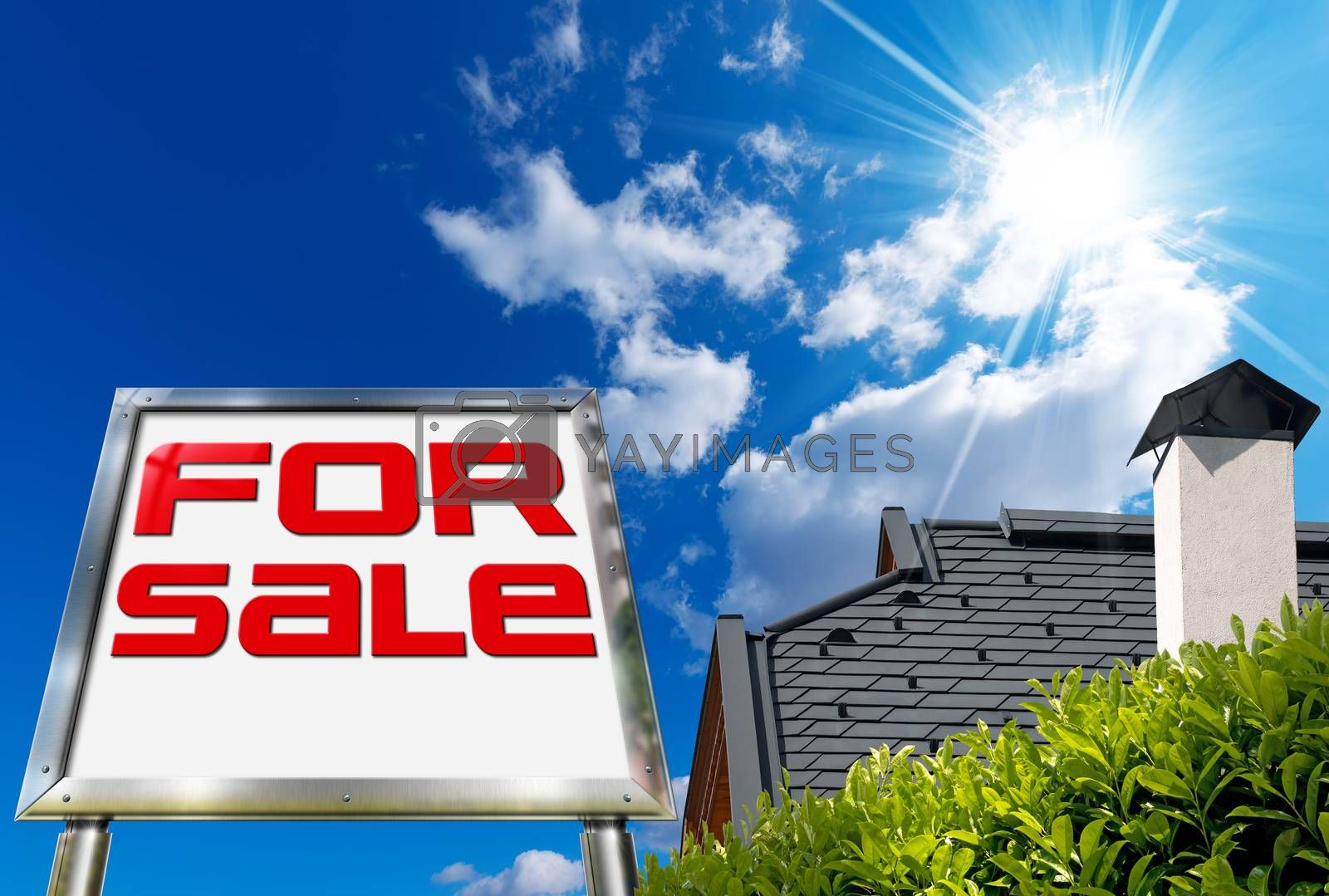 House For sale - Big Chrome Billboard by catalby