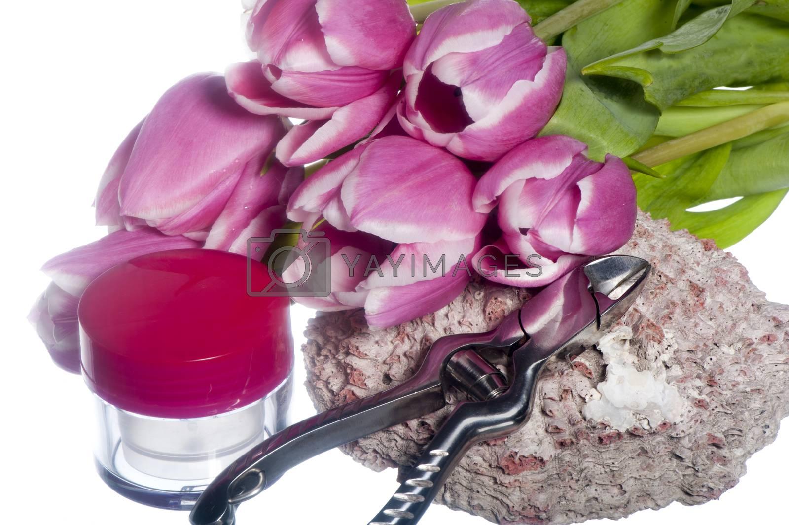 manicure  by carla720