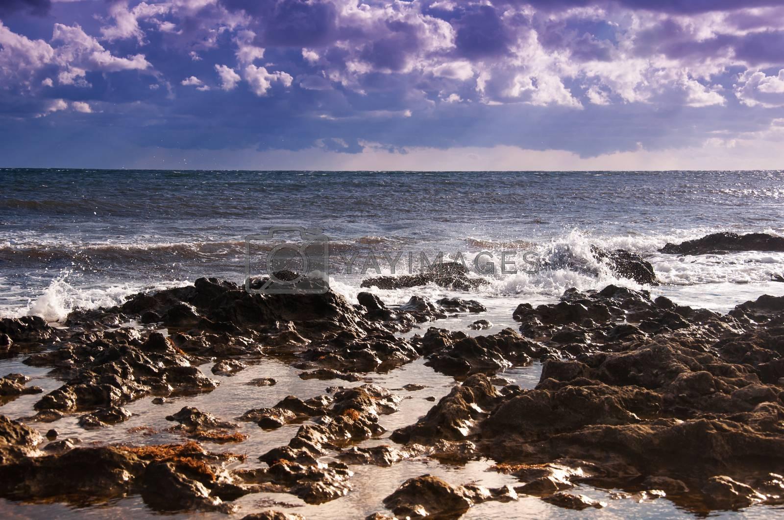 Seascape. Ebb. by bashta