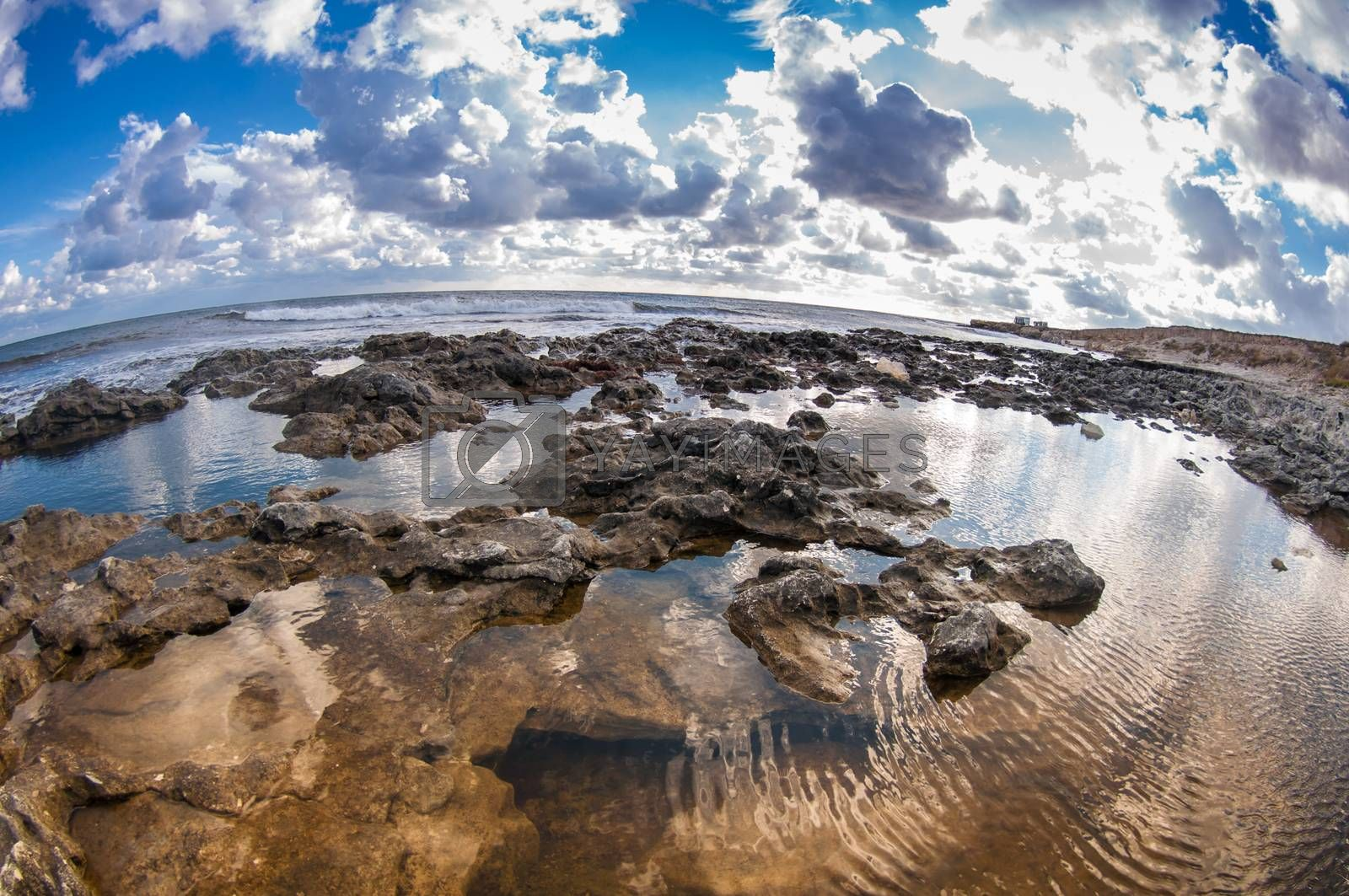 seascape by bashta