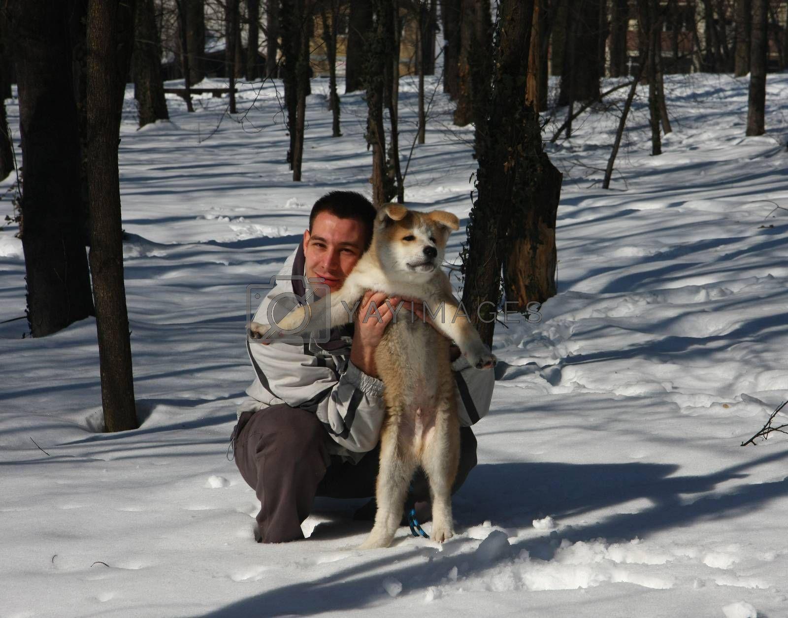 Puppie of Japanese dog Akita Inu,wth his owner,Belgrade,Serbia.First steps on the snow.