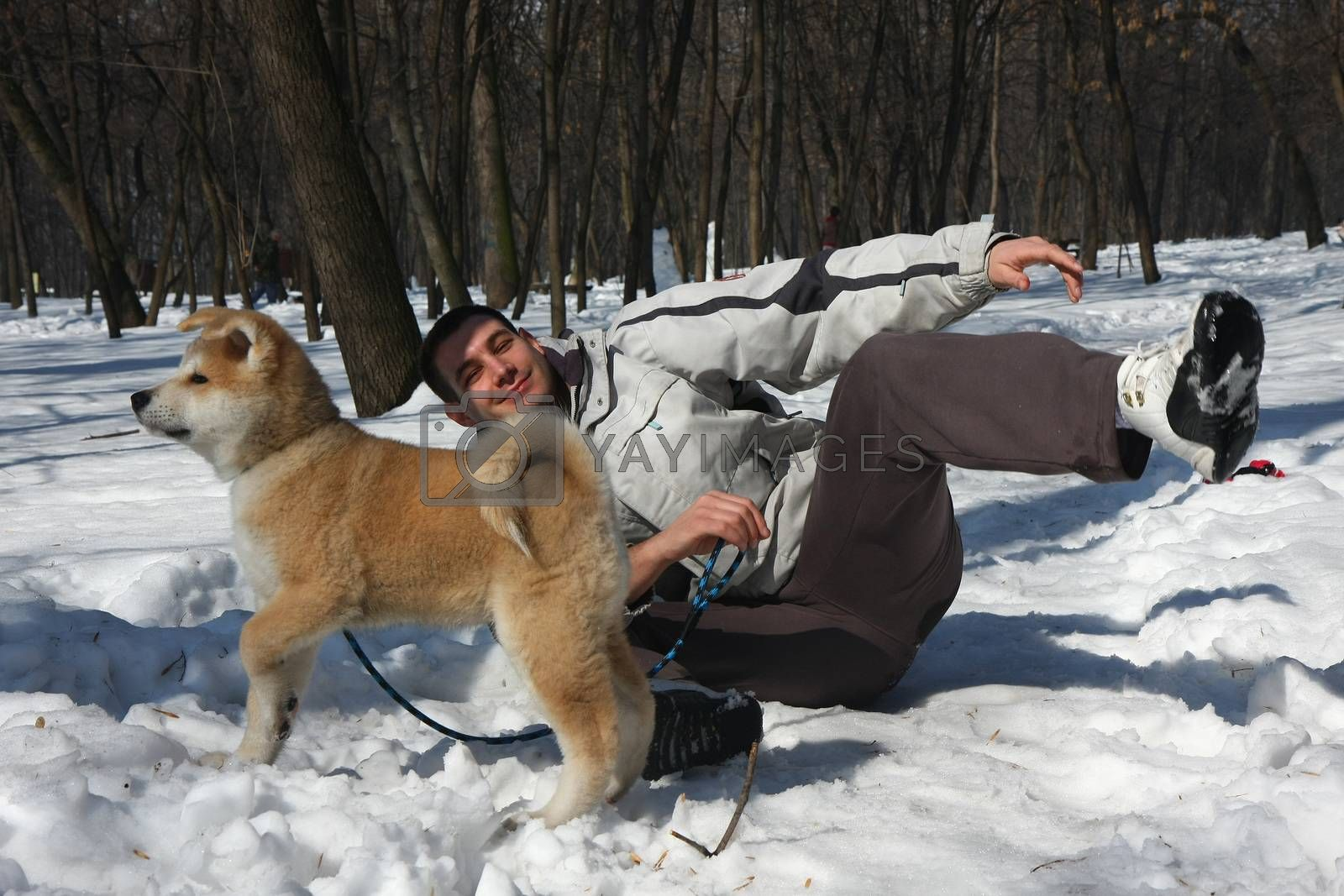 Asuko,my puppie of Japanese dog Akita Inu, with my son ,Belgrade,Serbia.First steps on the snow.