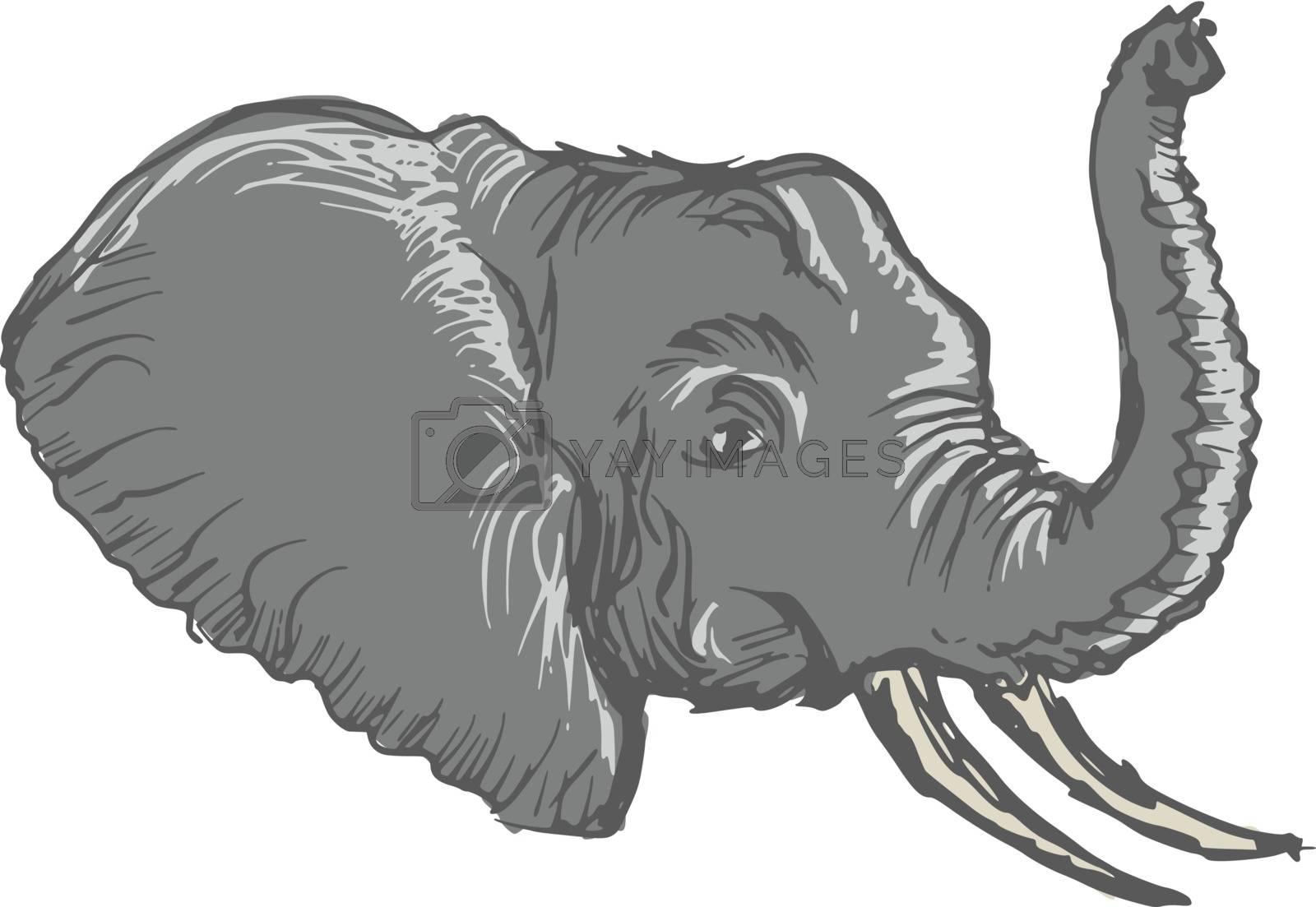 hand drawn, sketch, cartoon illustration of head of elephant