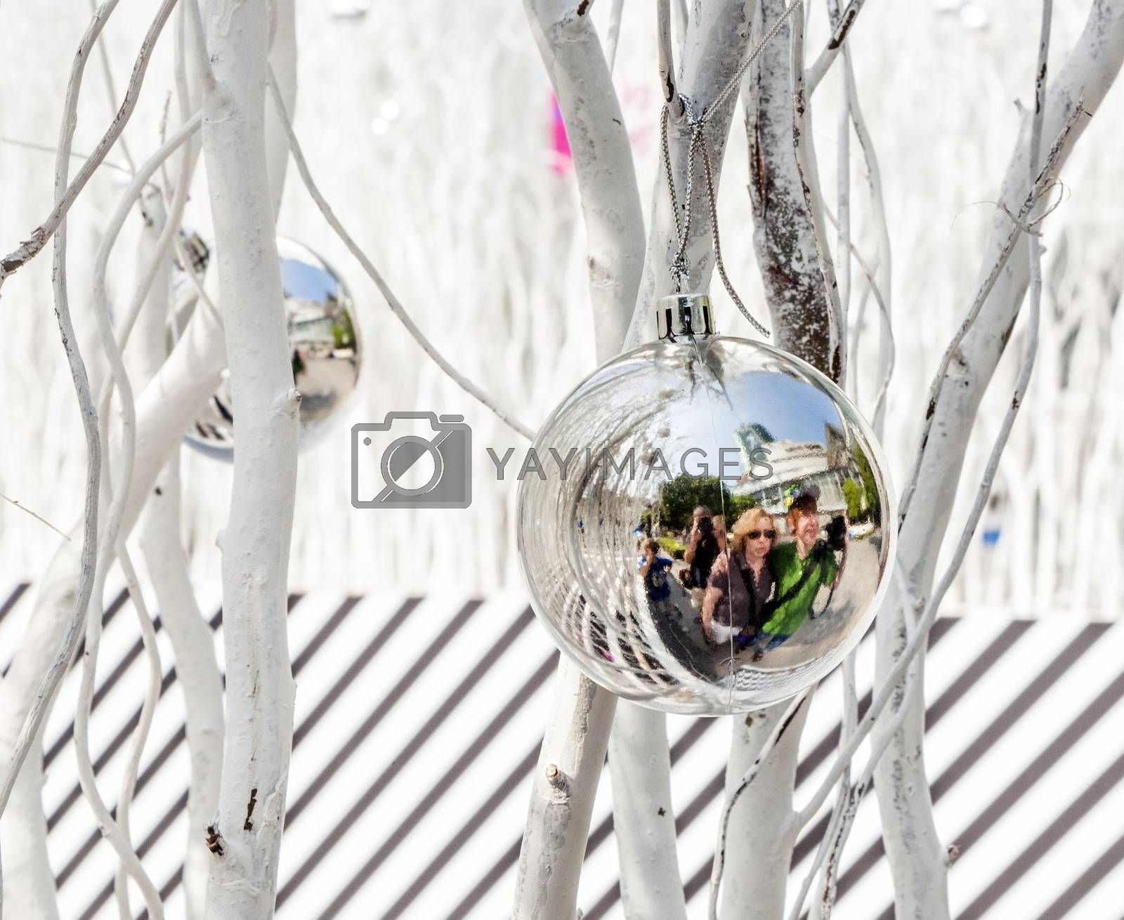 white painted branches give a harmonic background with chrismas tree balls and mirroring of a family