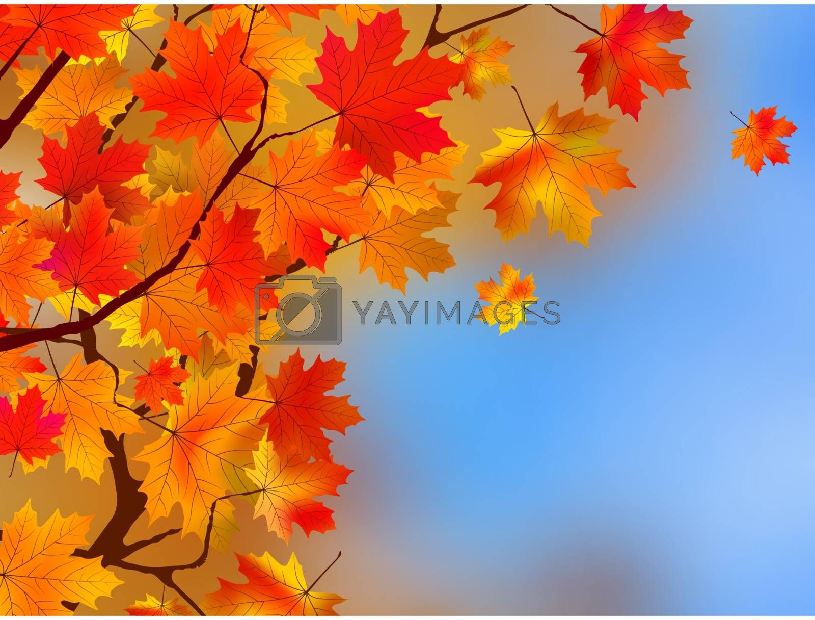 Background made of autumn leaves. EPS 8 vector file included