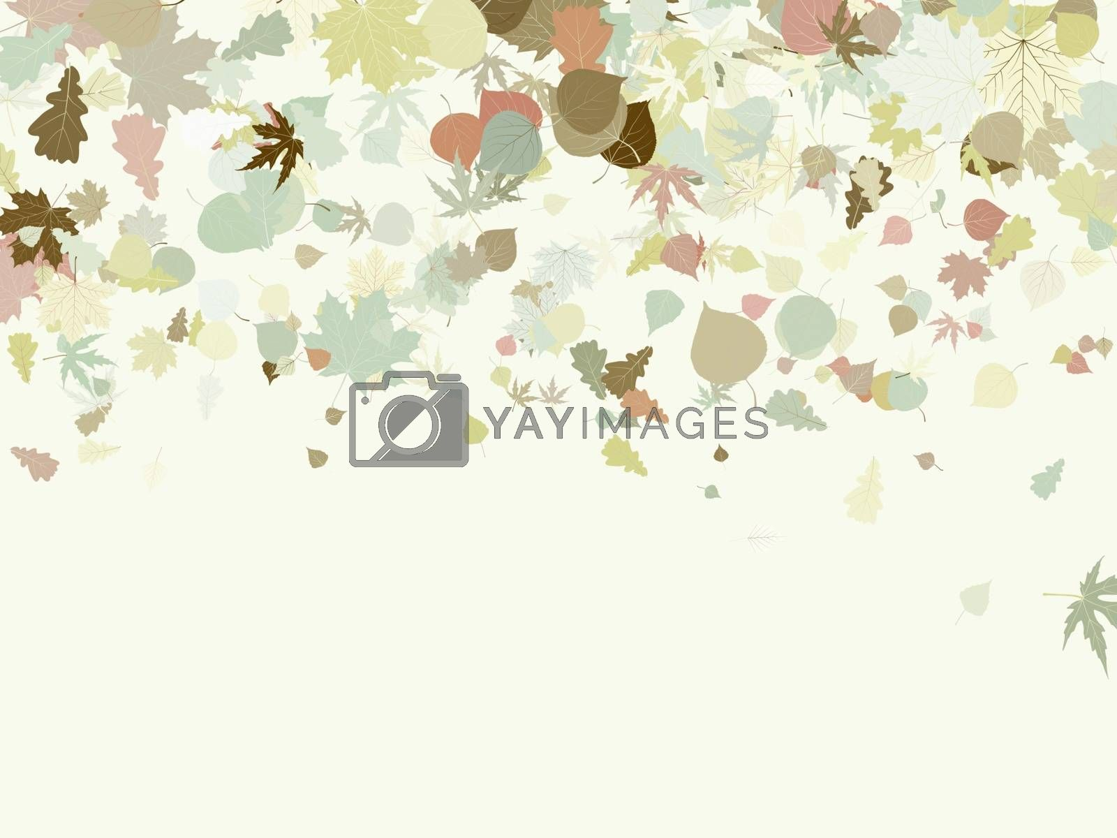 Autumn design with leafs. EPS 8 vector file included