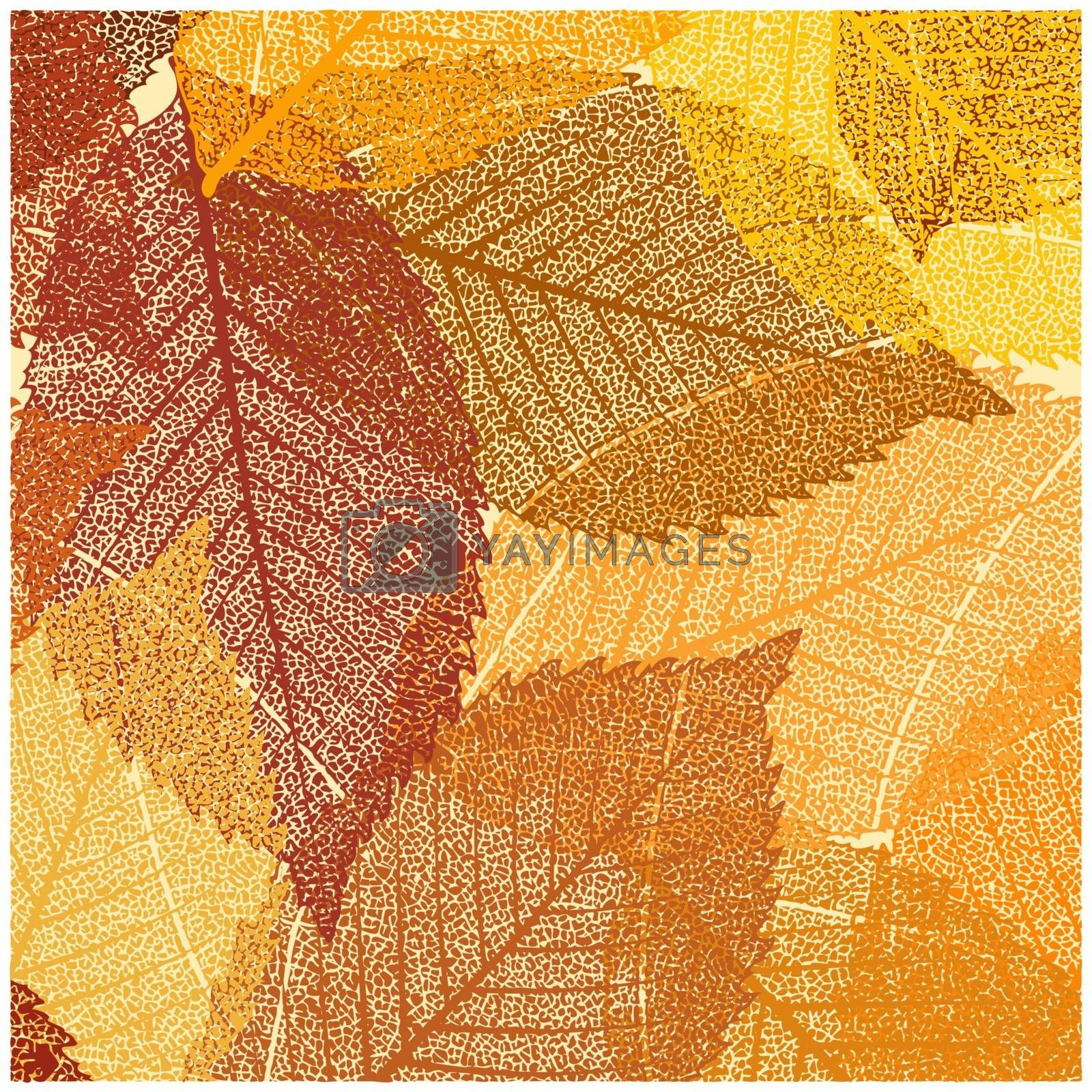 Dry autumn leaves template. EPS 8 vector file included