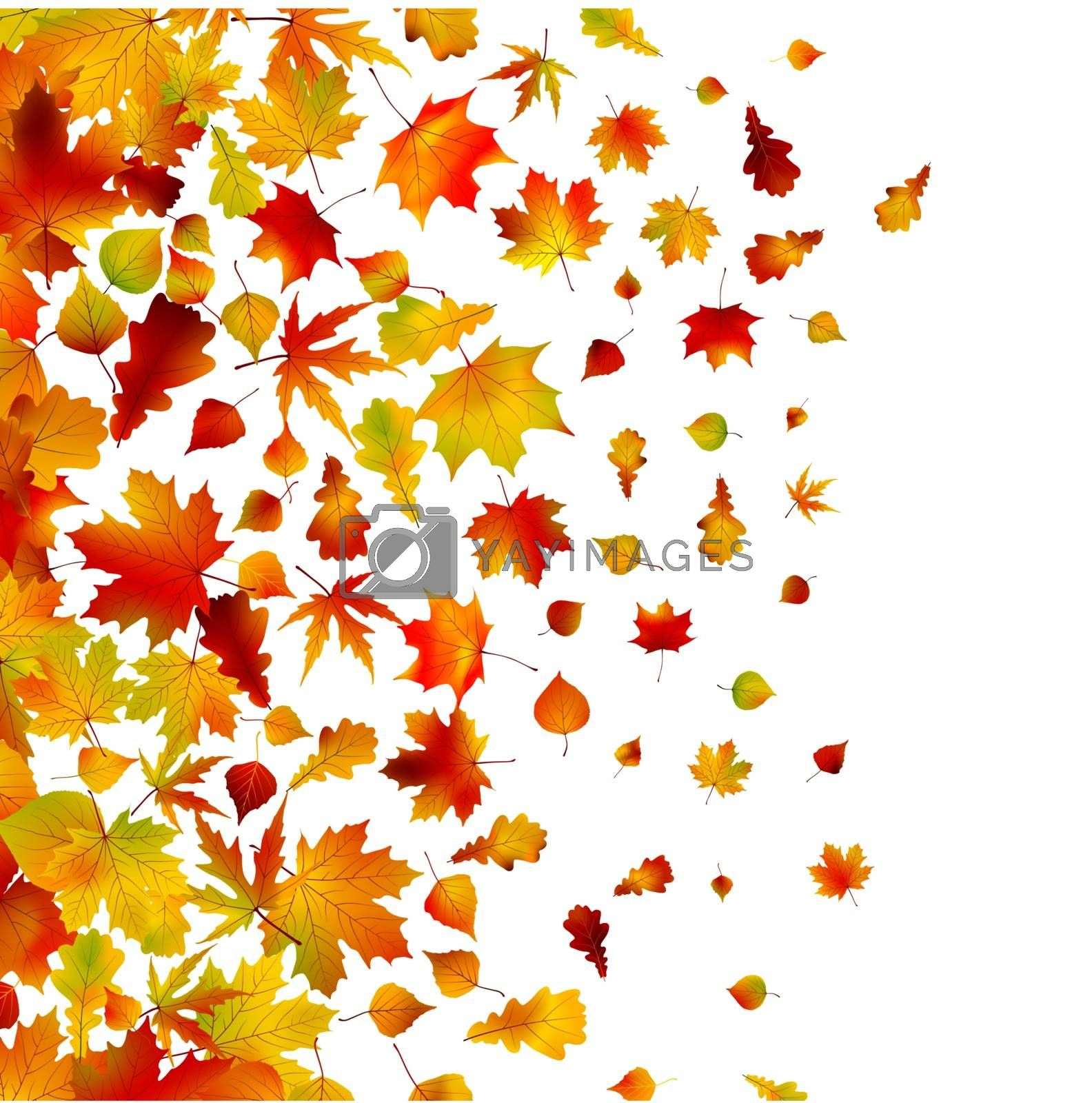 Autumn leaves, background. EPS 8 by Petrov_Vladimir