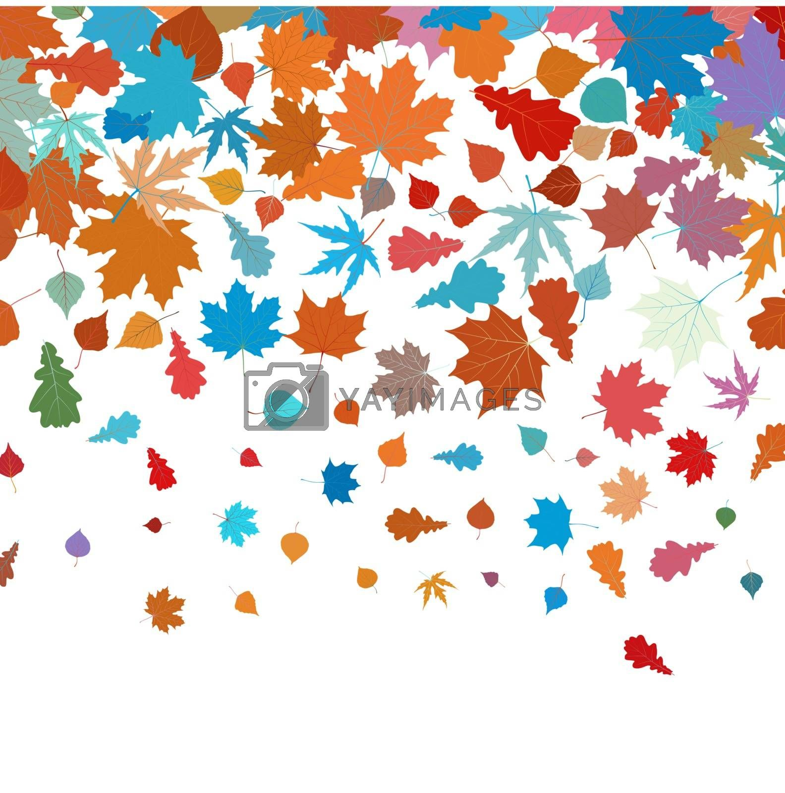 Autumn leafs abstract background with place for your text. EPS 8 vector file included
