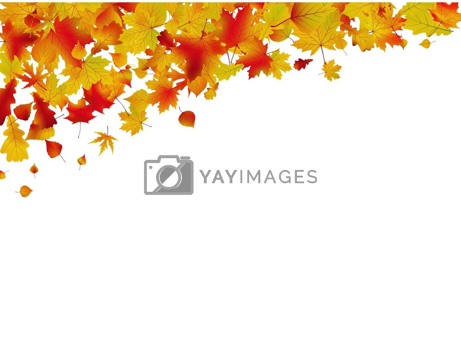 Autumn card of colored leafs. EPS 8 by Petrov_Vladimir