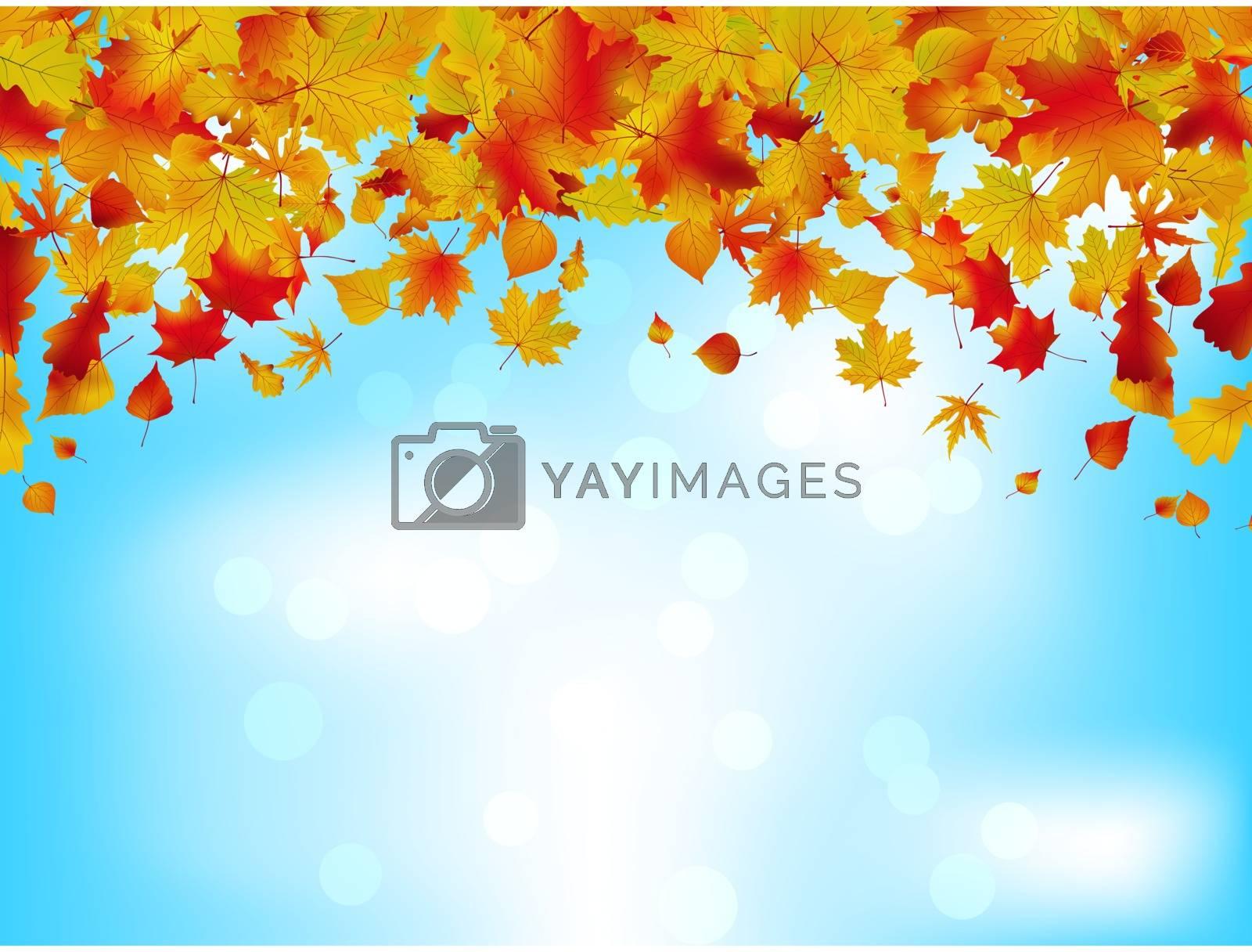 Autumn leaves on blue sky. EPS 8 by Petrov_Vladimir