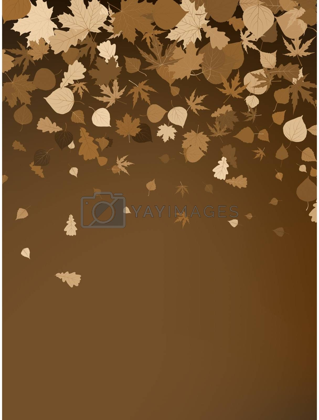 Brown autumnal design template. EPS 8 vector file included