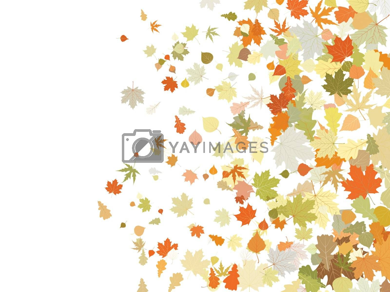Atumnall leaves, warm illustration. EPS 8 vector file included
