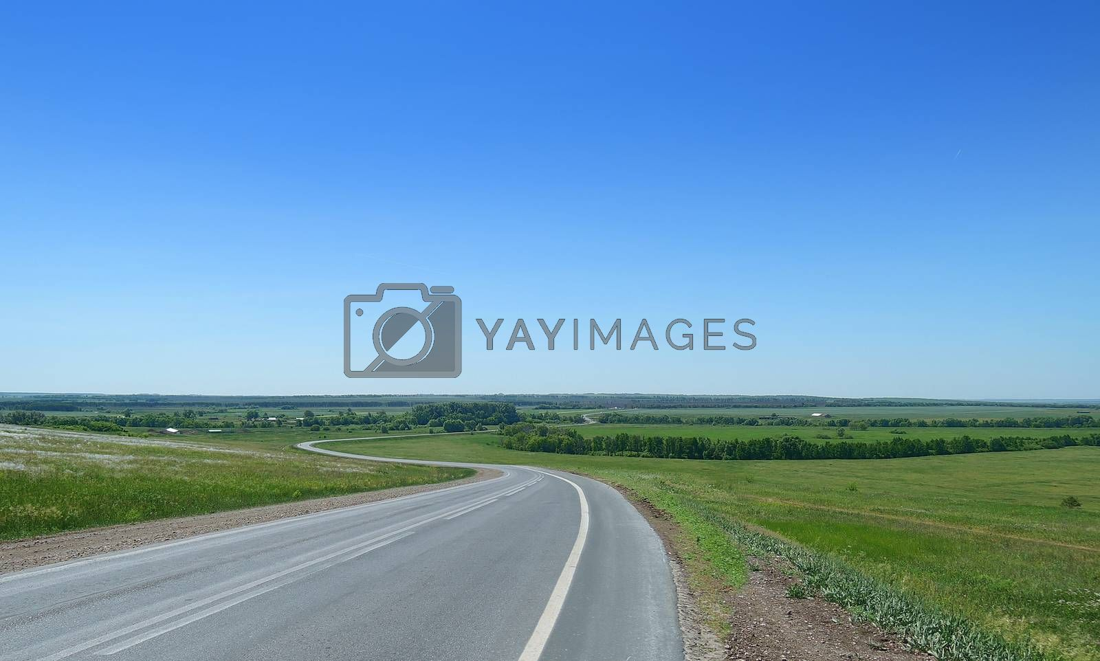 winding road in the countryside in summer