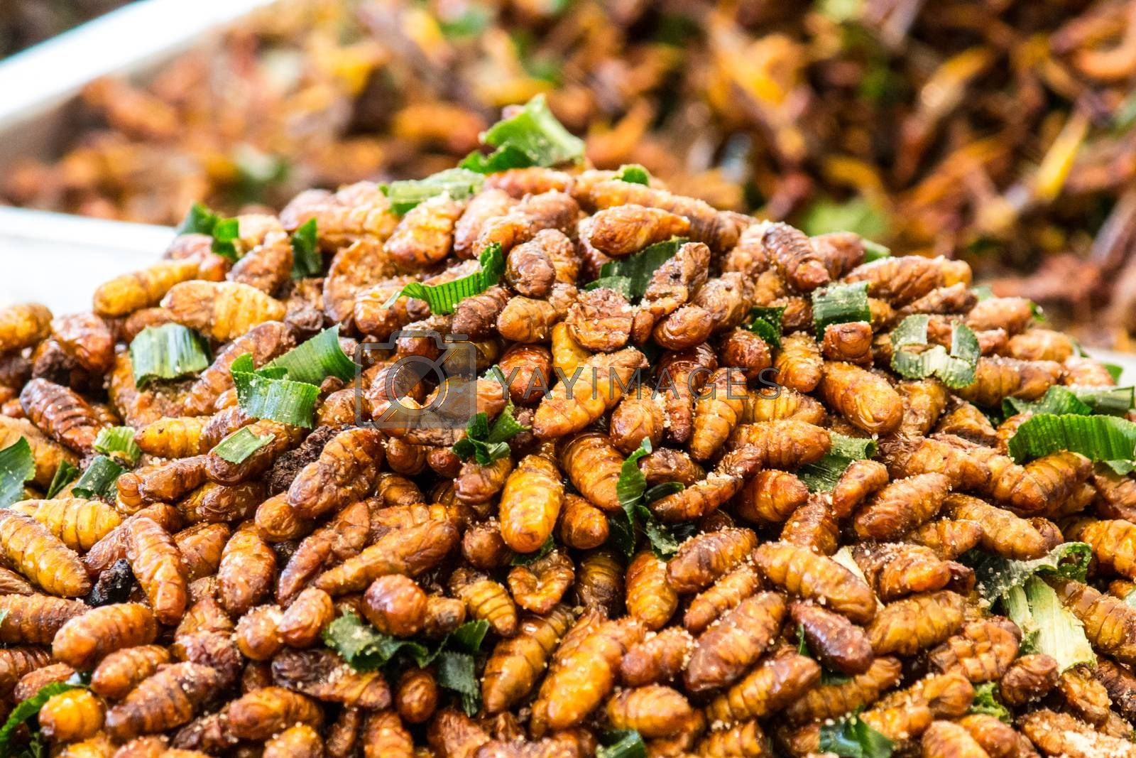 This is an insect fried foods that are high protein and very delicious