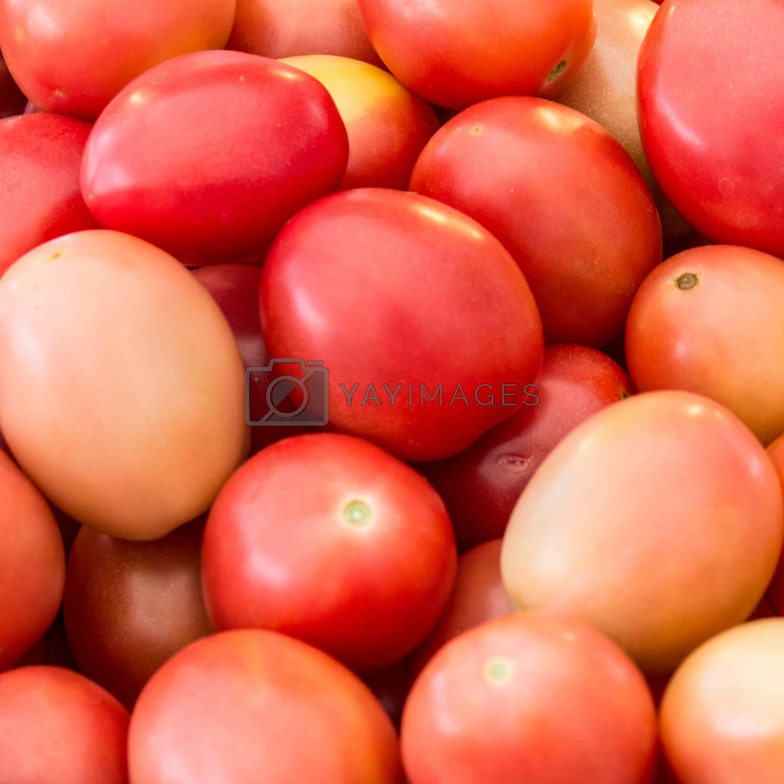 small tomato background for papaya salad (somtam)