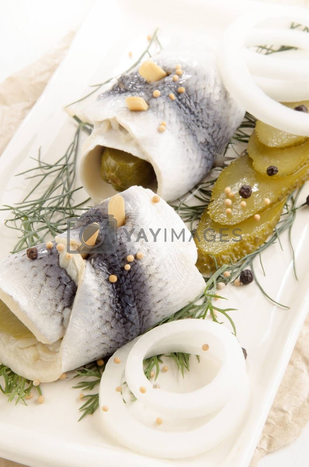 Royalty free image of pickled herring with gherkin and onlion by astridkitchen