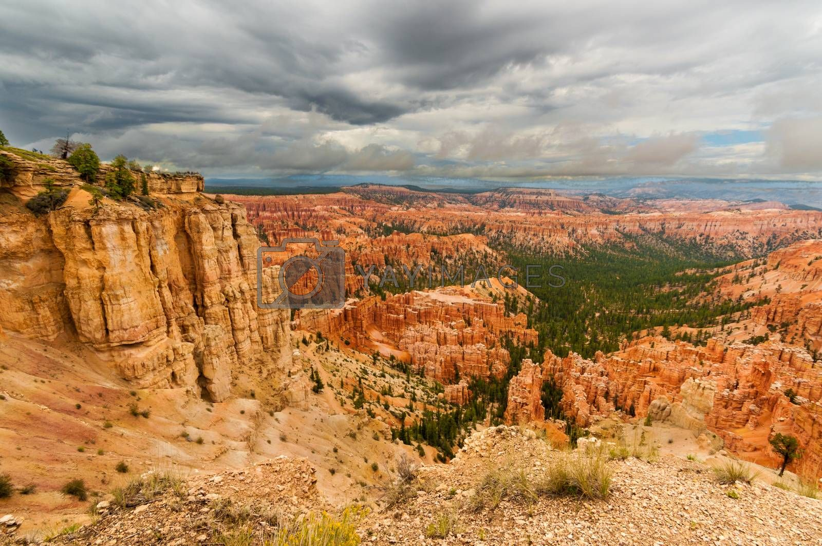Royalty free image of Bryce Canyon stalactites by weltreisendertj