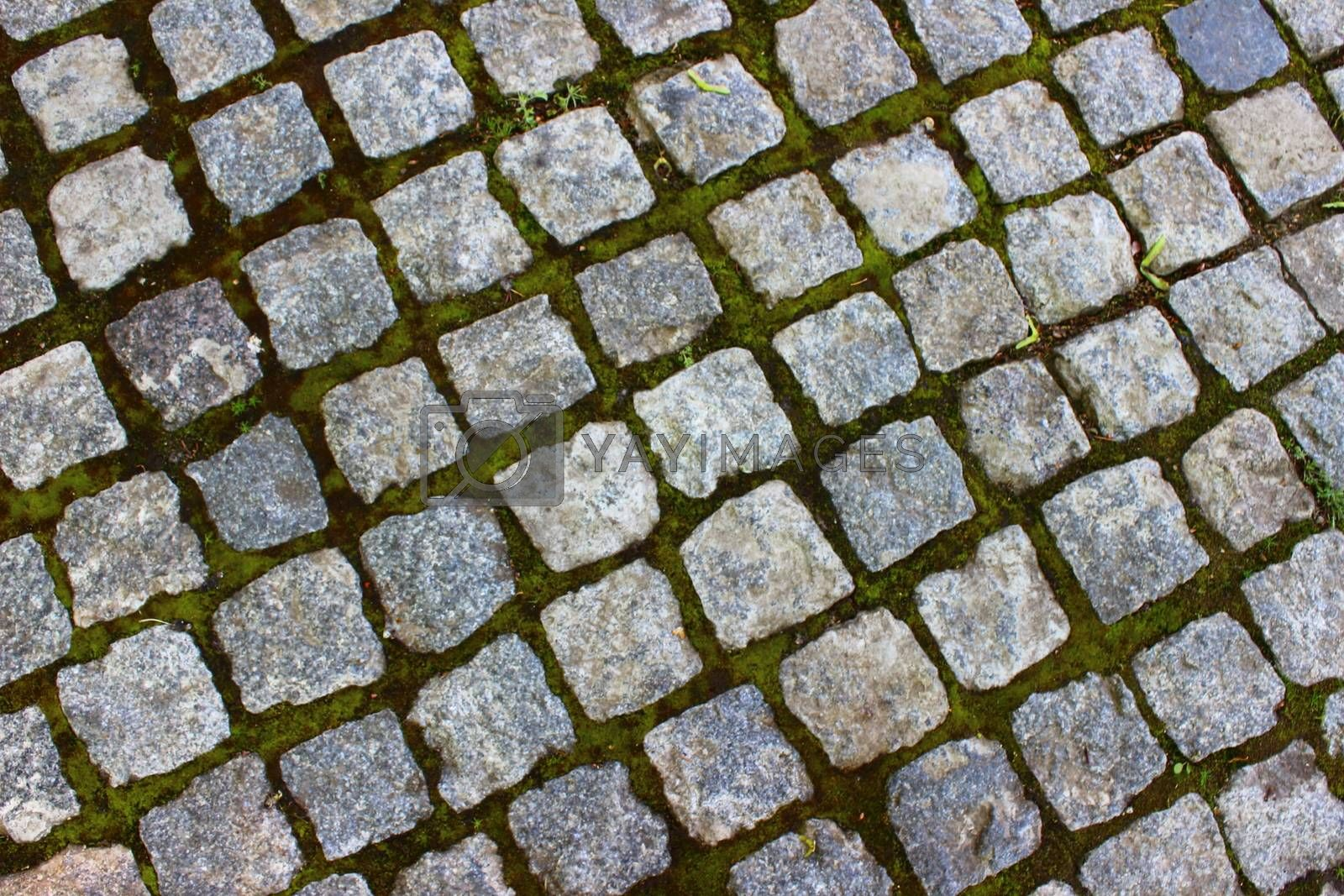 path in the park is lined with stones square and rectangular shapes
