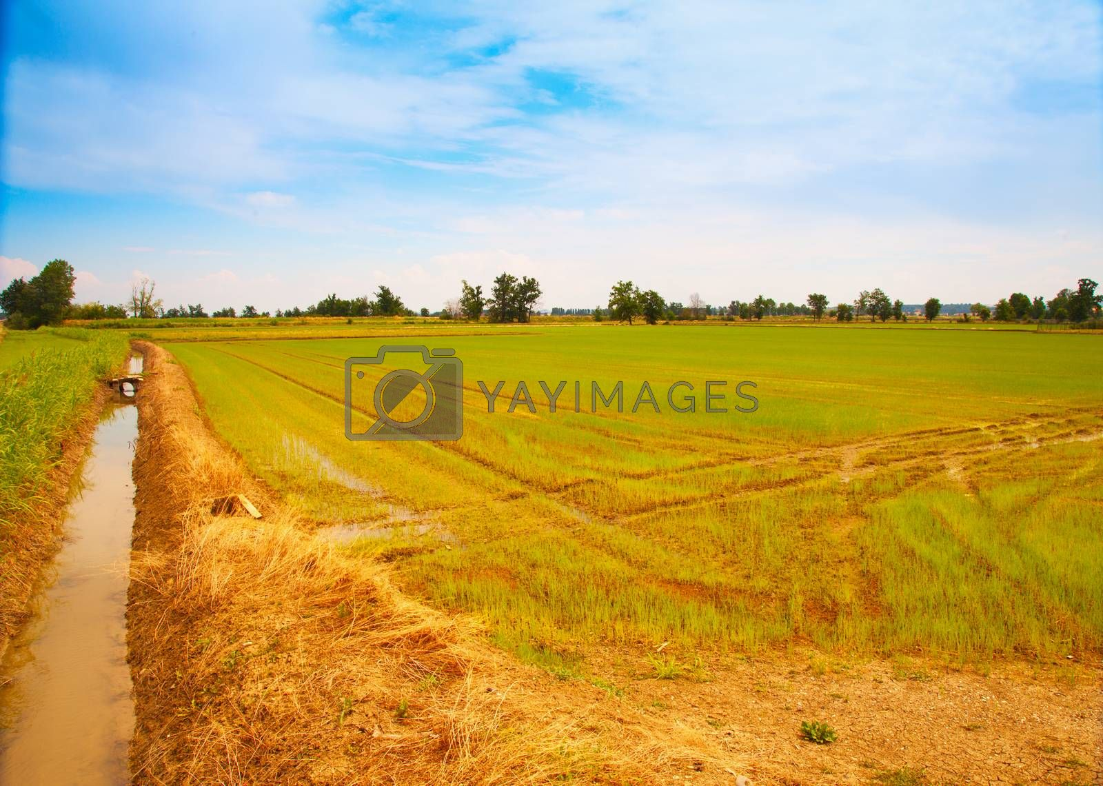 Panorama by Koufax73