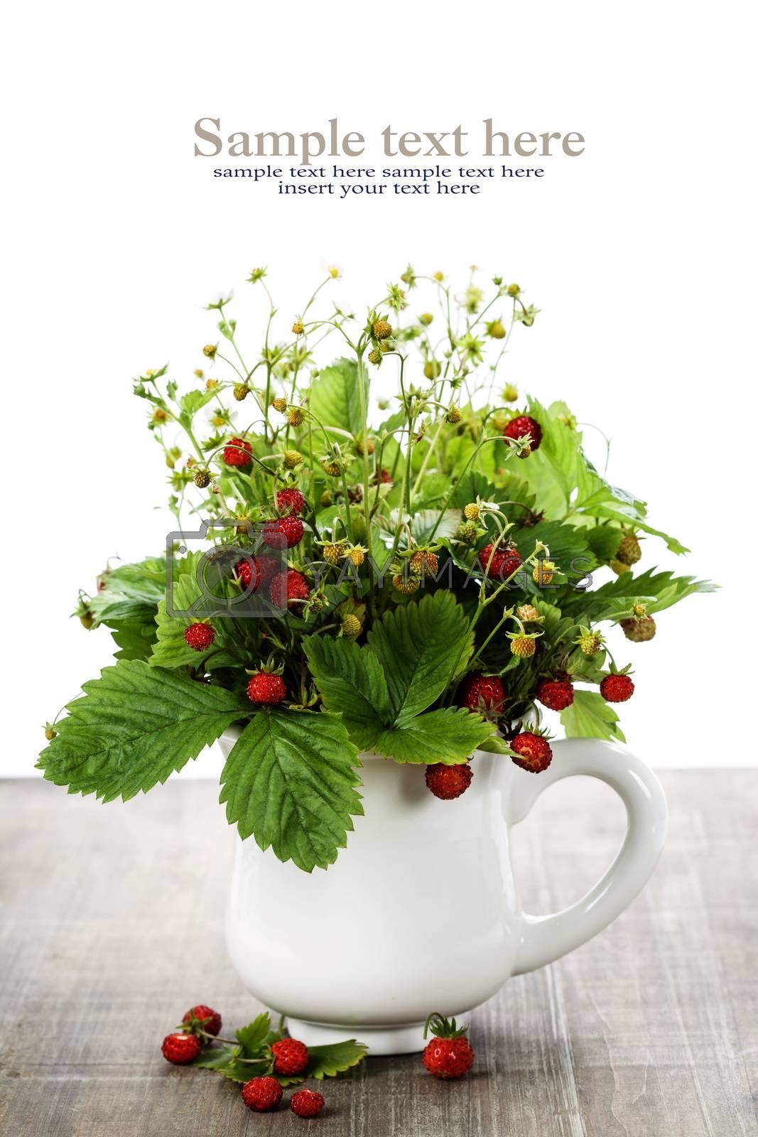 bouquet of wild strawberry by klenova