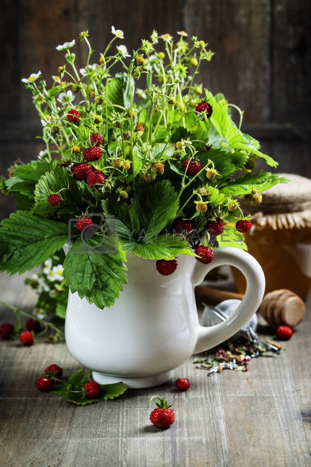 bouquet of wild strawberry with herbal tea and honey by klenova