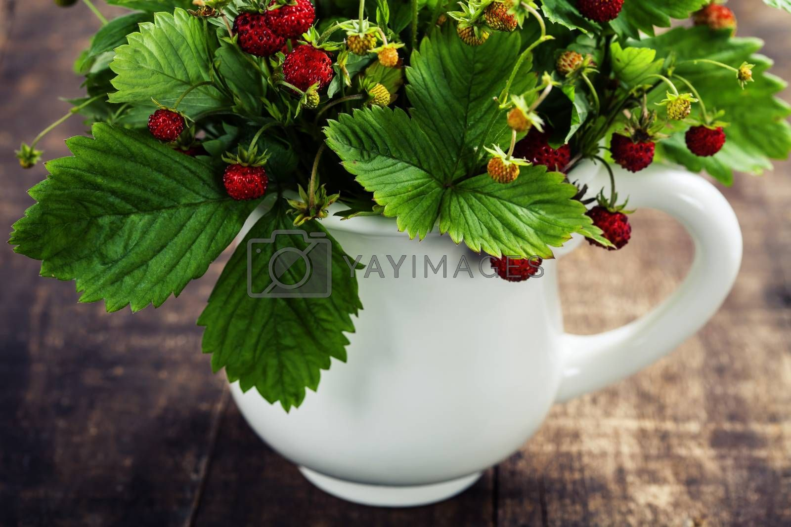 bouquet of wild strawberry by klenova