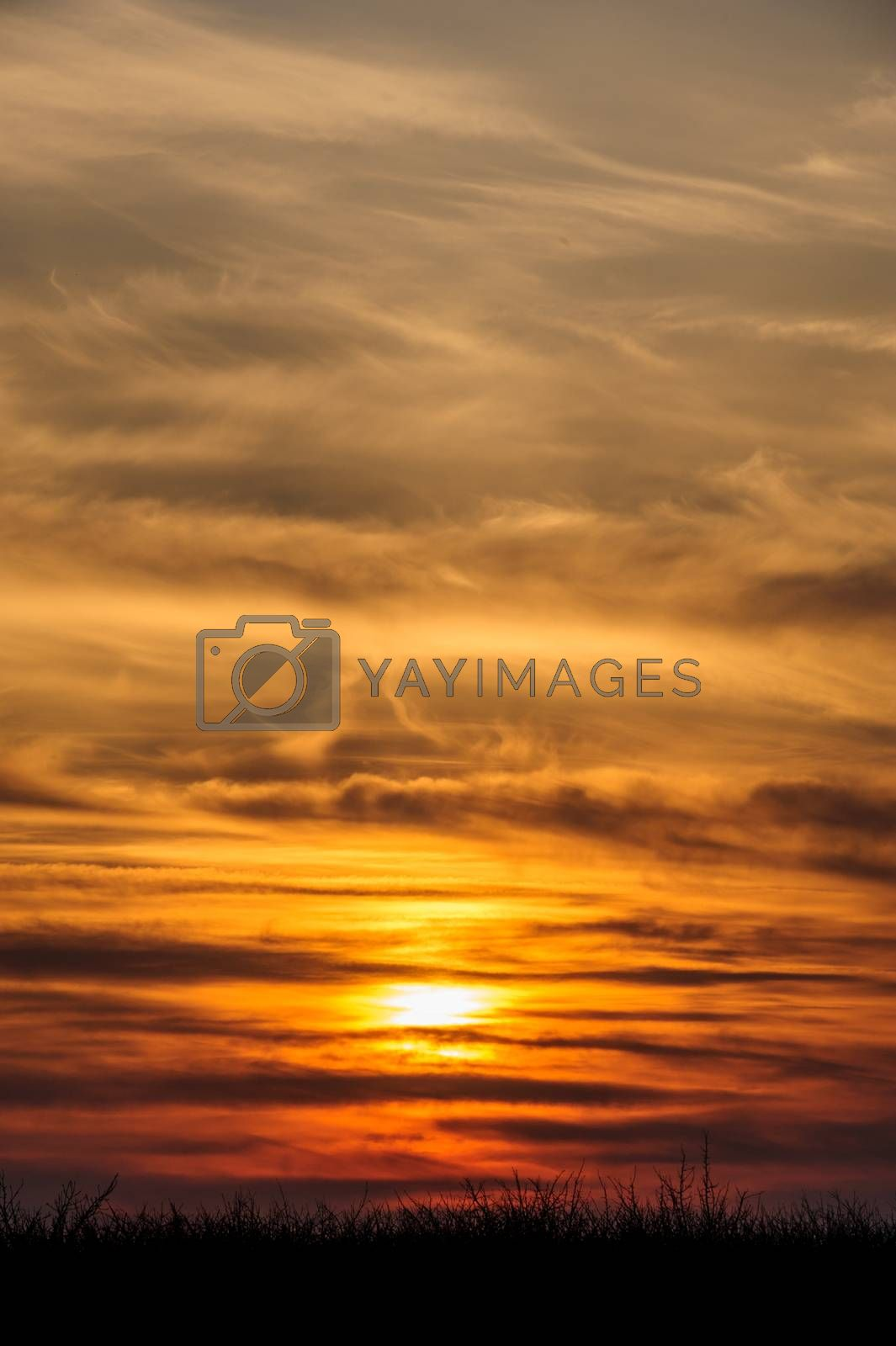 dramatic orange sunset by starush