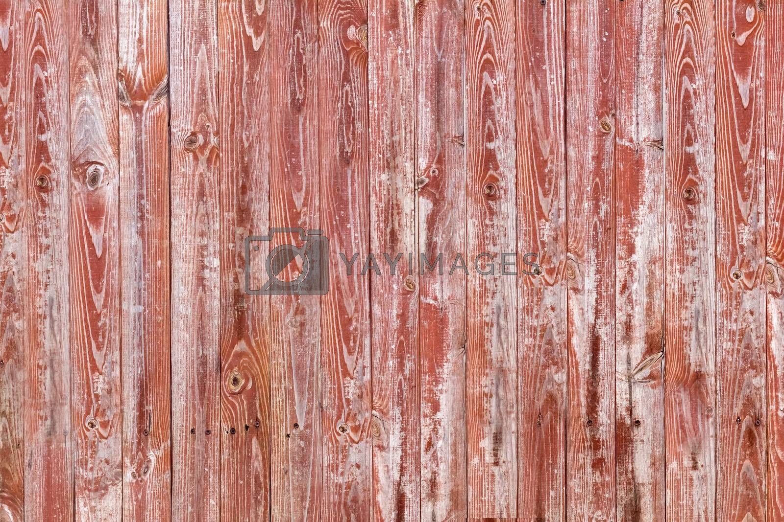 Wooden texture by yelenayemchuk