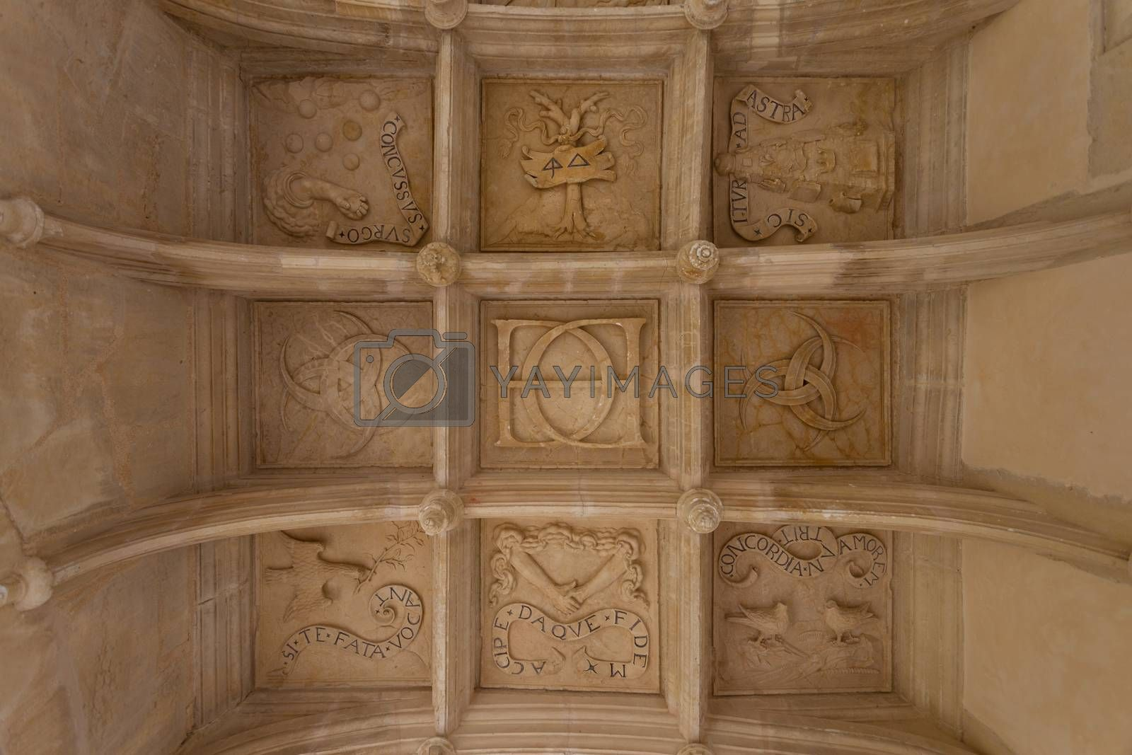 coffered ceiling of Dampierre-sur-Boutonne castle in charente maritime , France