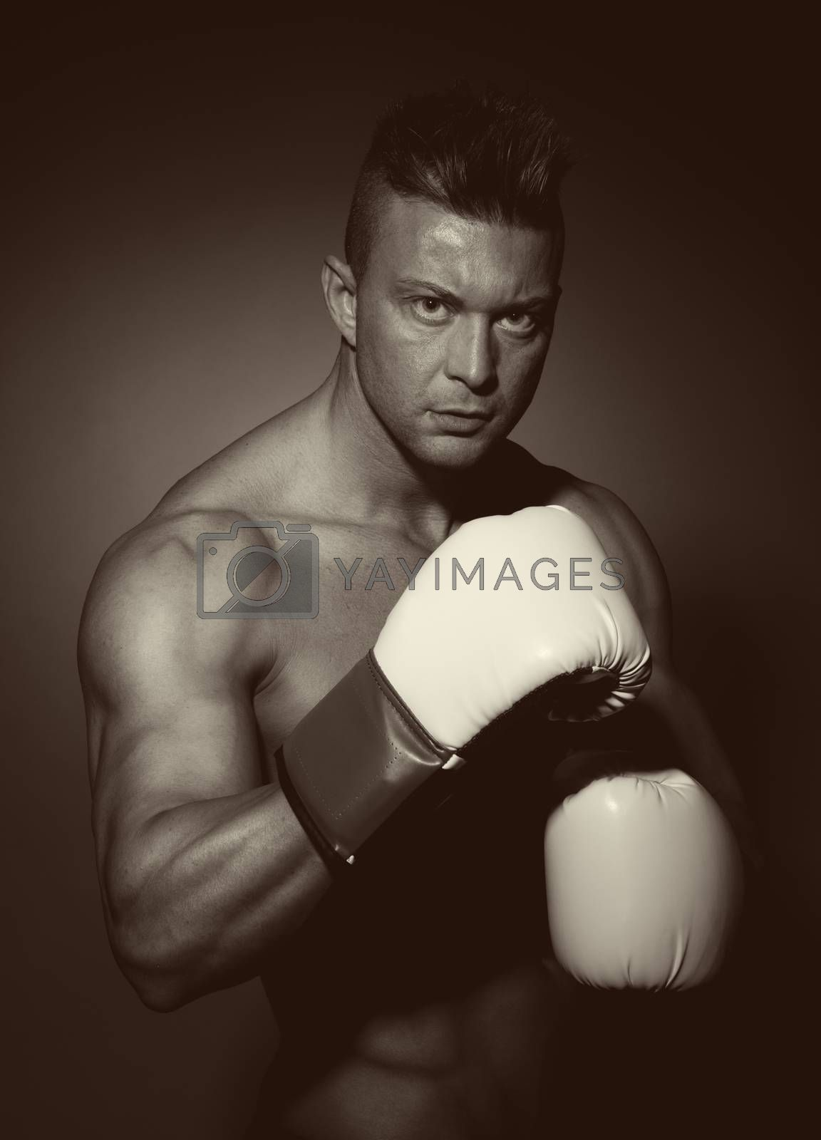 Boxer posing on dark background with fists raised.