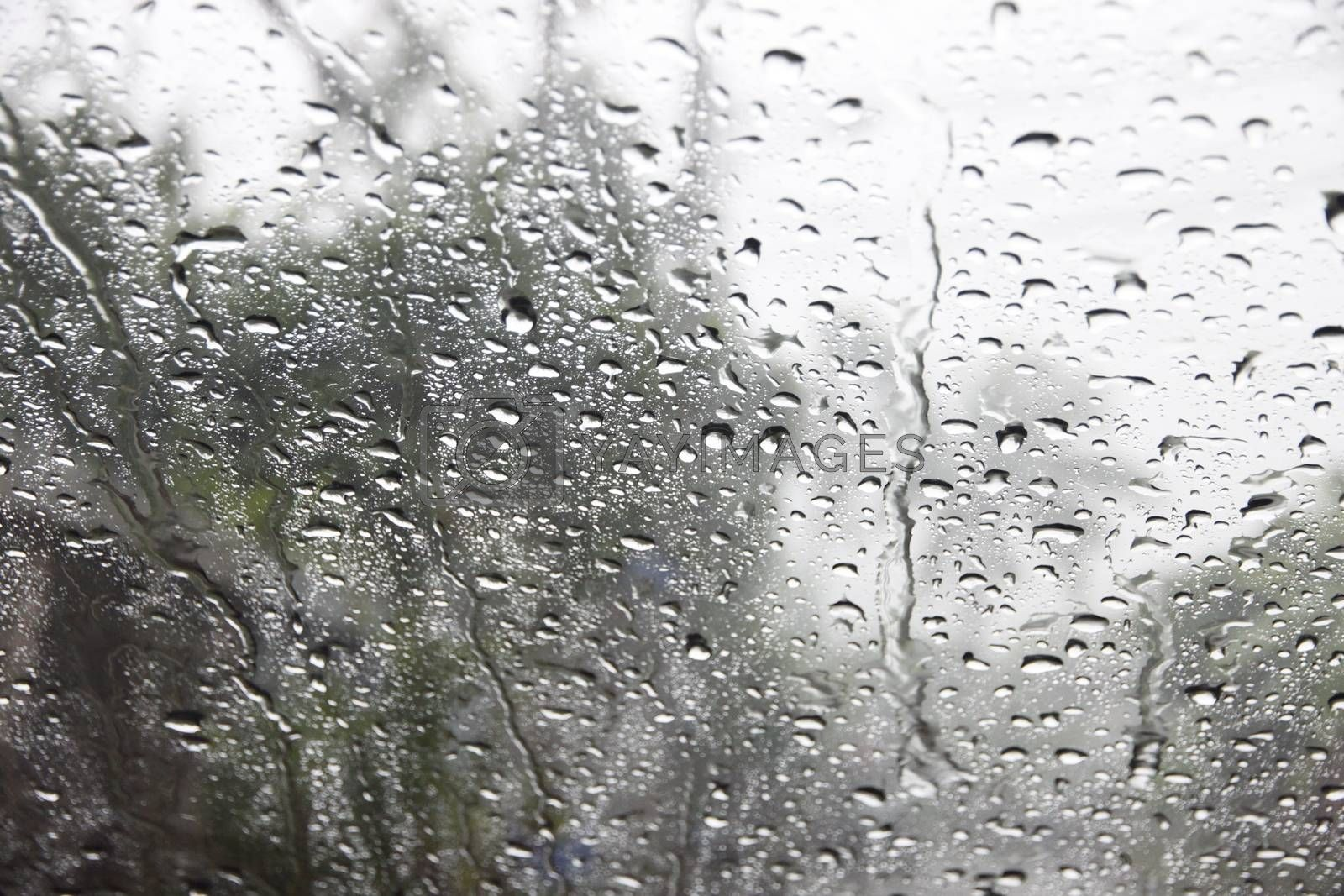 Dew on the mirrors,A Windscreen mirror on a rainy day.