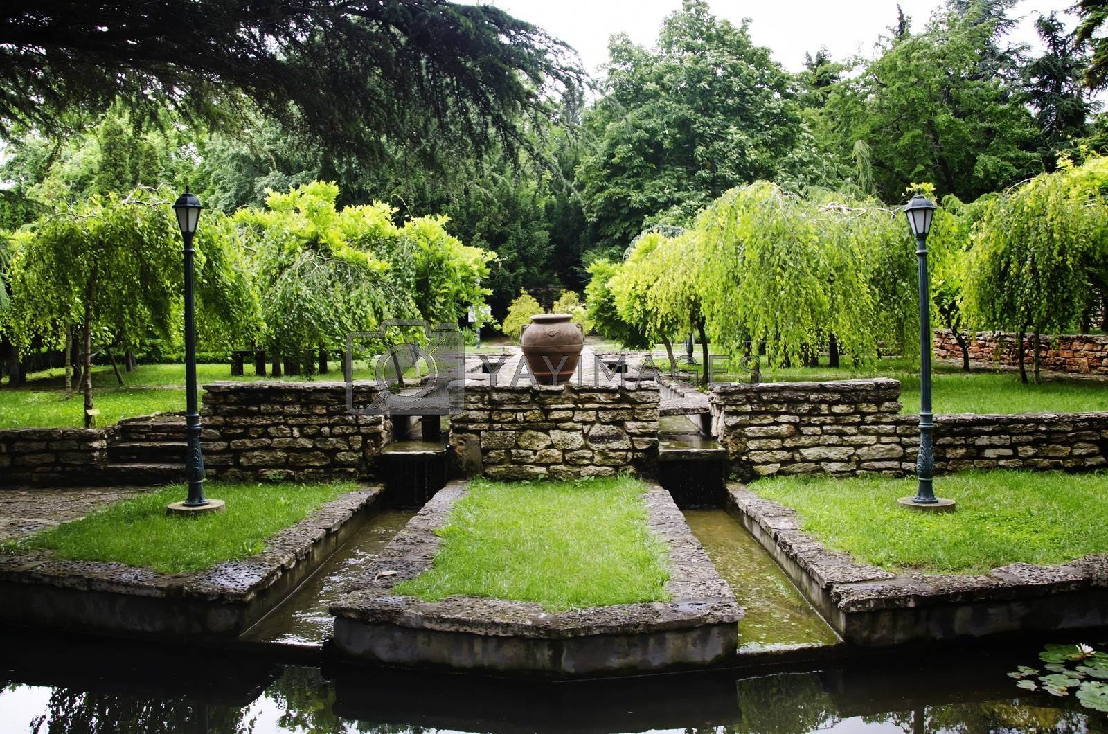 Gardening and Landscaping With Decorative Trees and Plants
