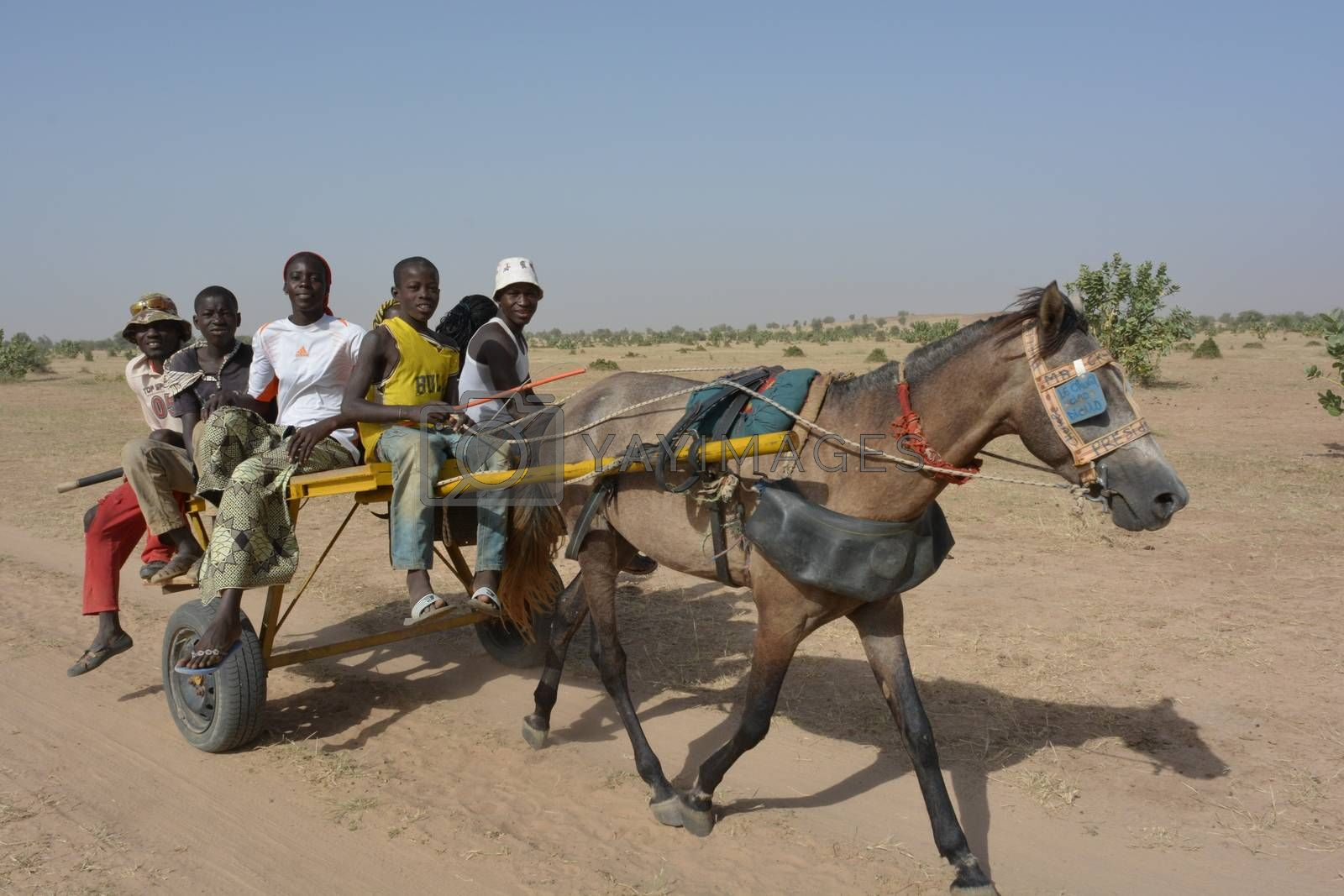 MATAM,SENEGAL-CIRCA NOVEMBER 2013:a group of kids from the Peul tribe uses the horse and carriage as transport in the desert,circa November 2013.