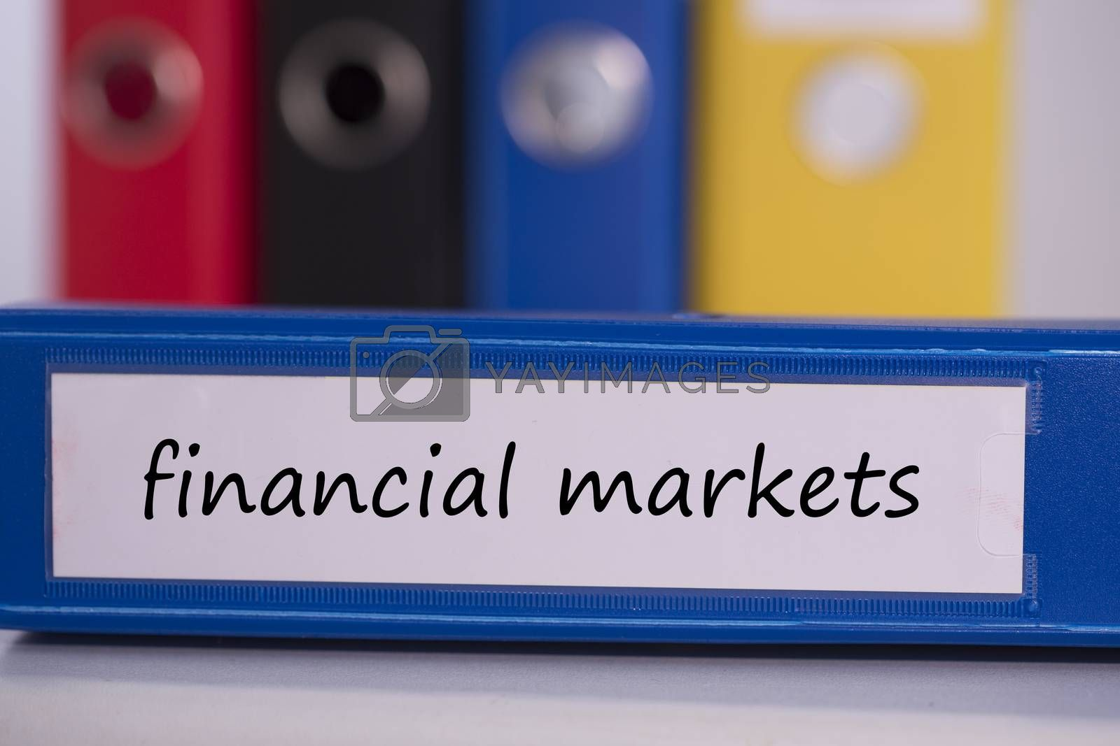 Financial markets on blue business binder by Wavebreakmedia