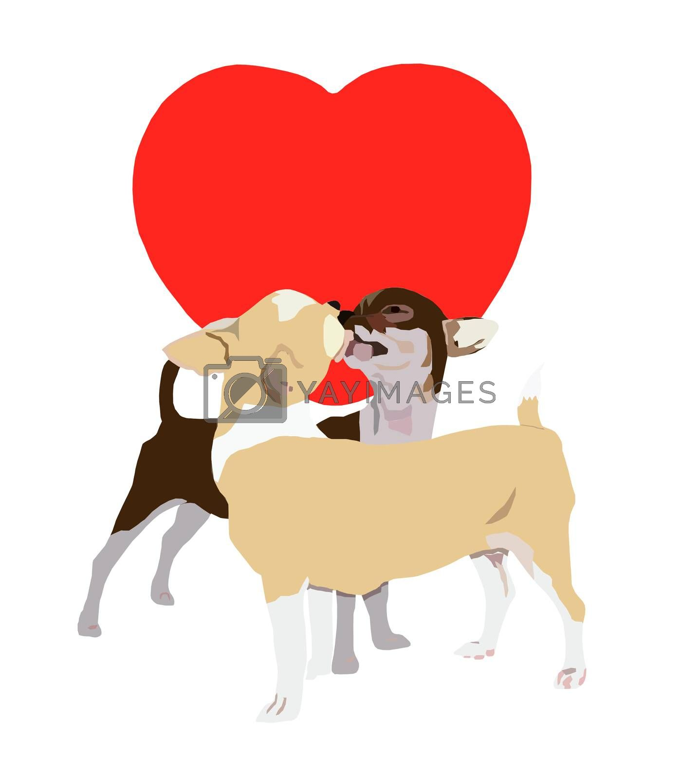 Kissing chihuahua on red heart and white background