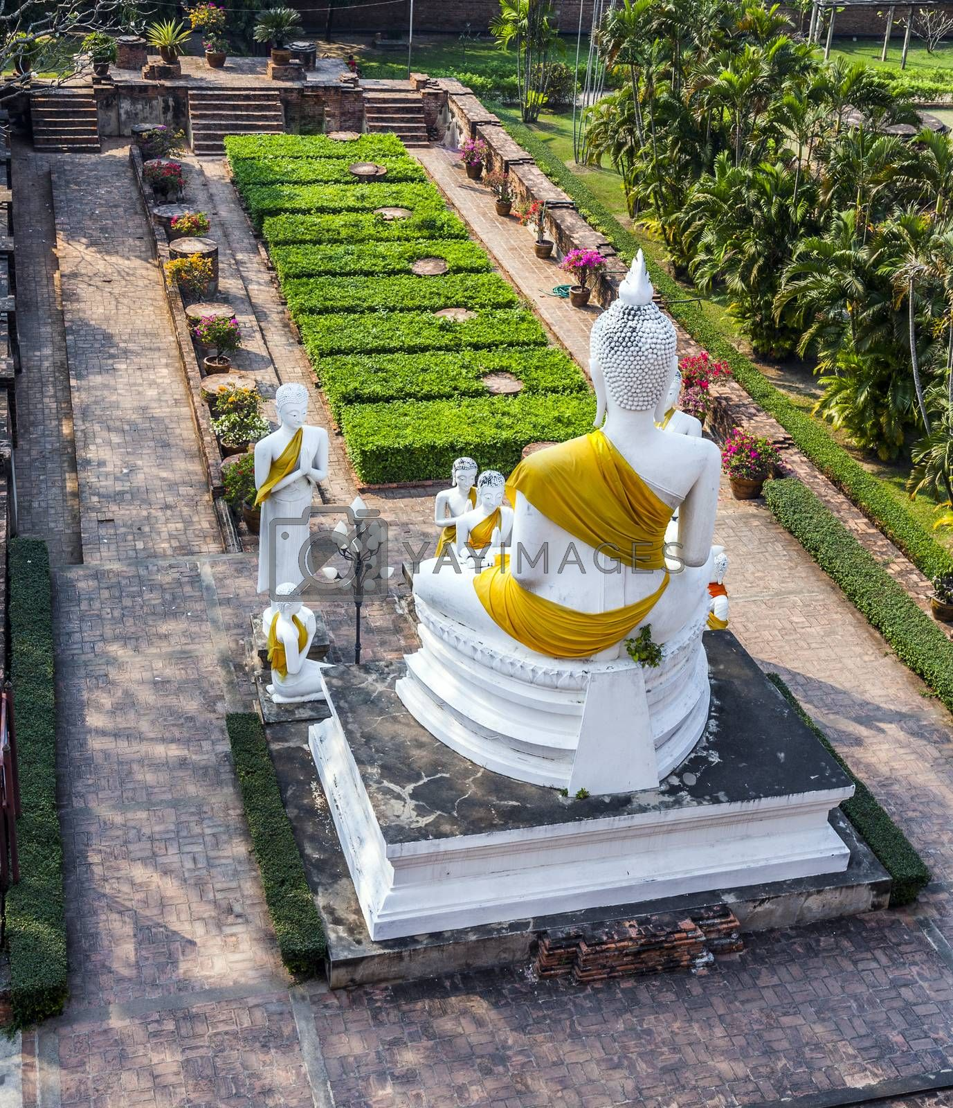 Royalty free image of Buddha statues at the temple of Wat Yai Chai Mongkol in Ayutthaya by meinzahn