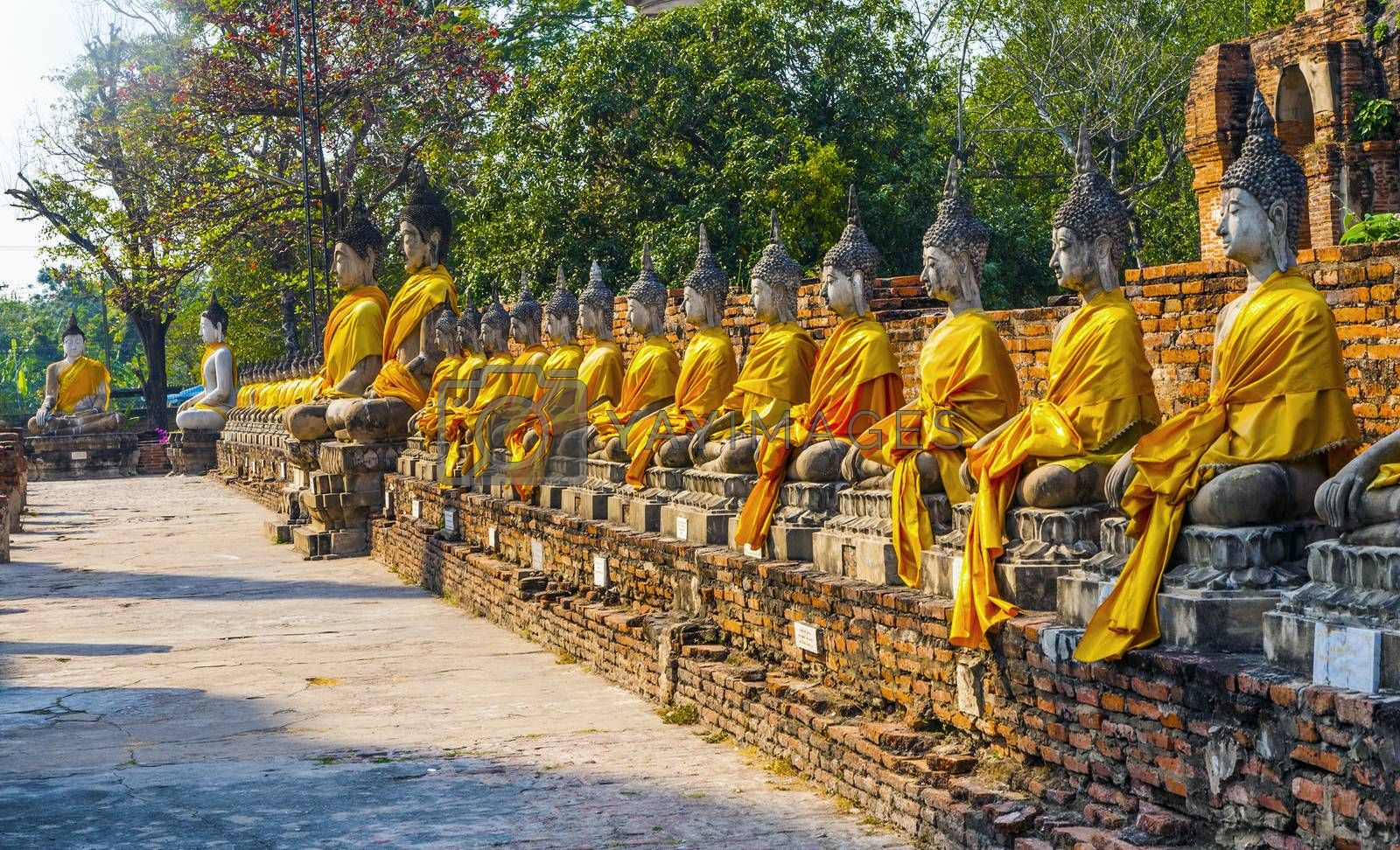 Royalty free image of Buddha statues at the temple of Wat Yai Chai Mongkol in Ayutthay by meinzahn