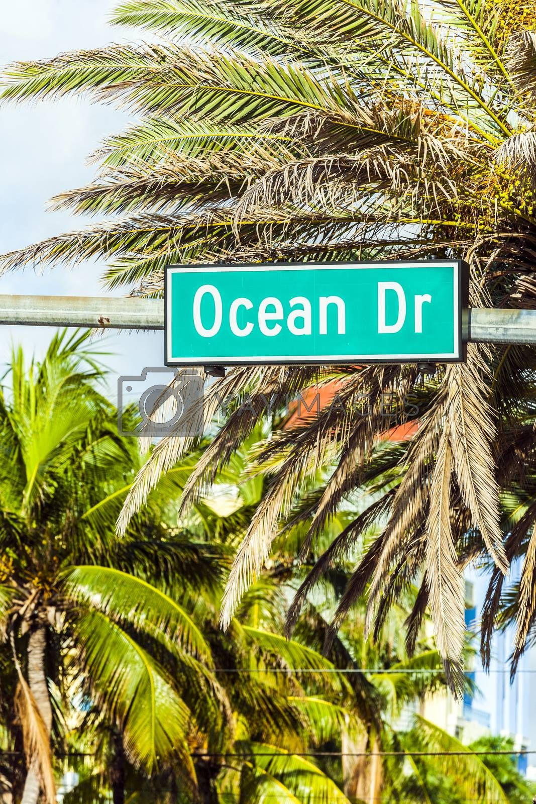 Royalty free image of street sign at Ocean drive in Miami by meinzahn