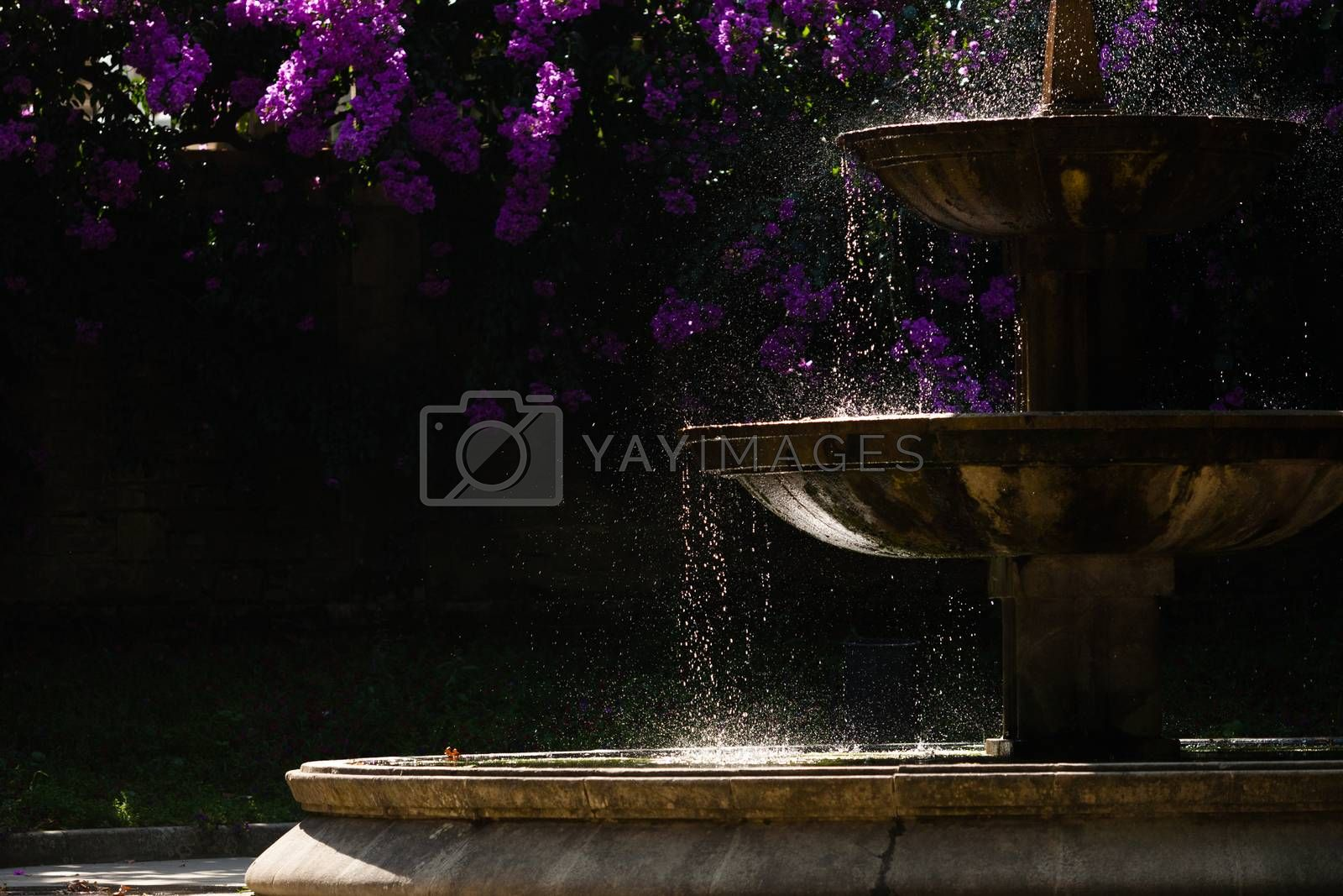 Fountain  silhouette, drops of water and flowers in a public park in the northwest of spain, Santiago de Compostela