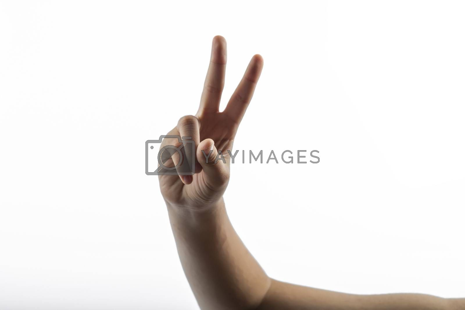 Young hands makes a gesture: victory sign with two fingers