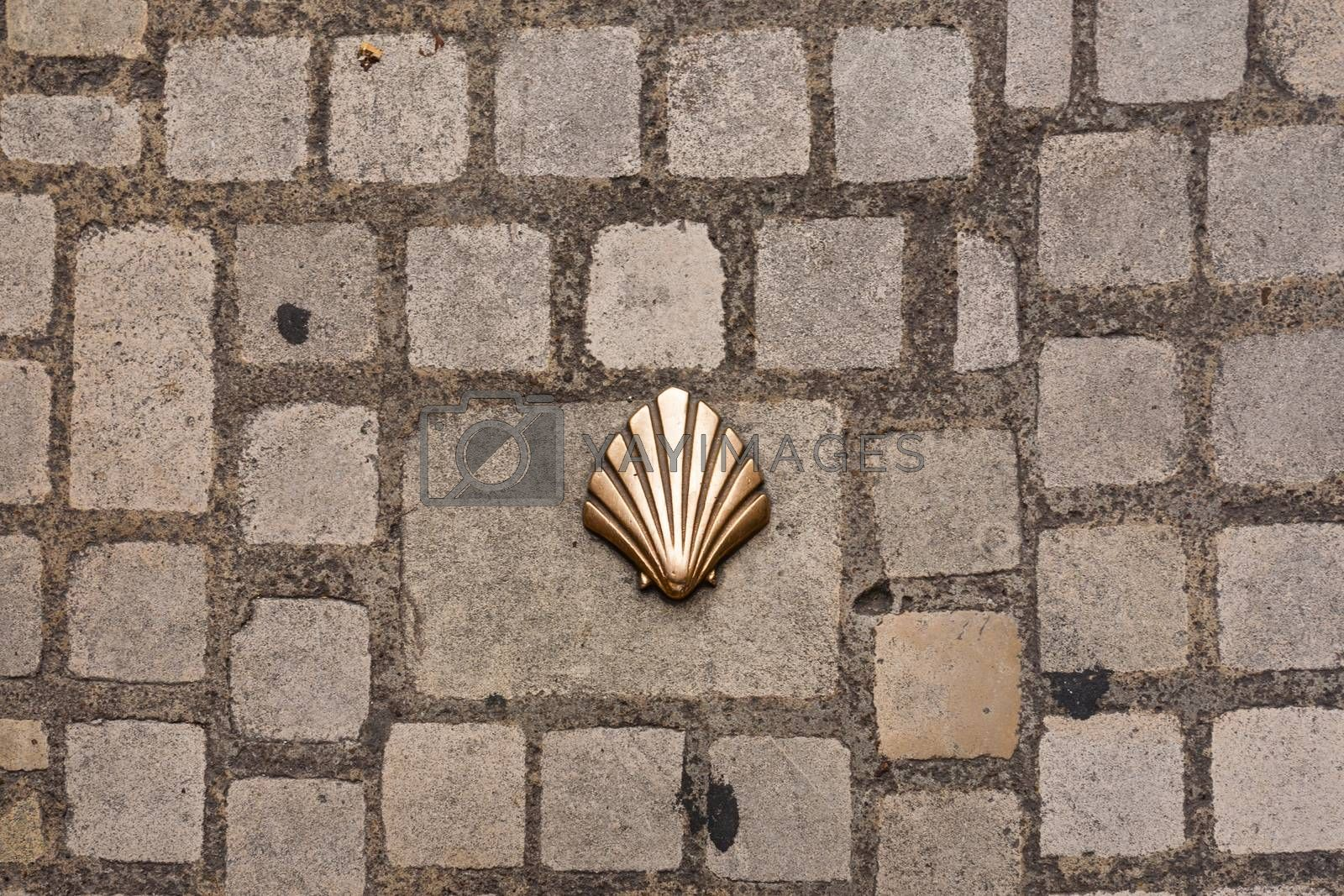 saint james way shell symbol on the street surface in Perigueux France